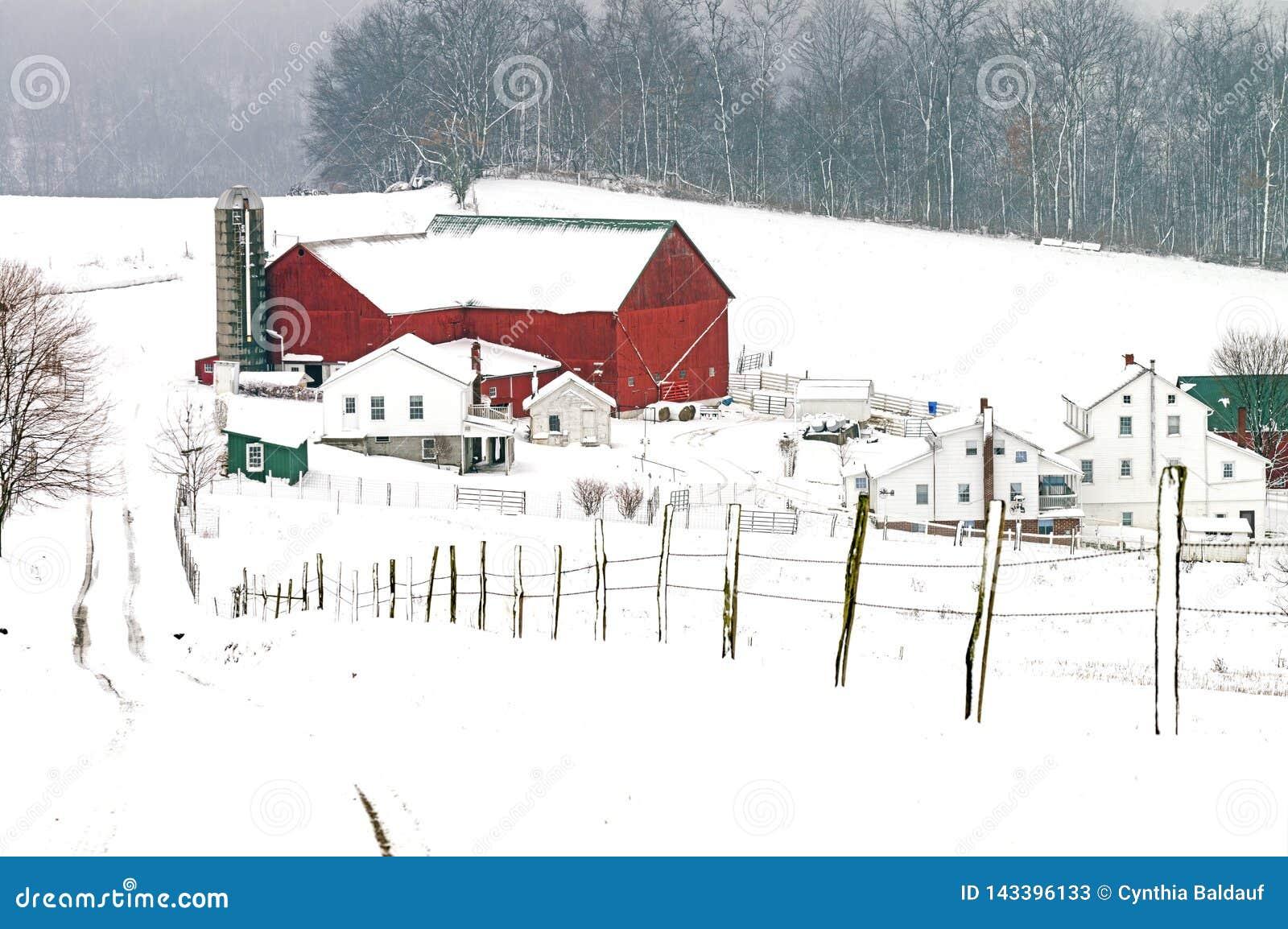 Amish ladugård och hemman i lantliga Ohio nära berlock