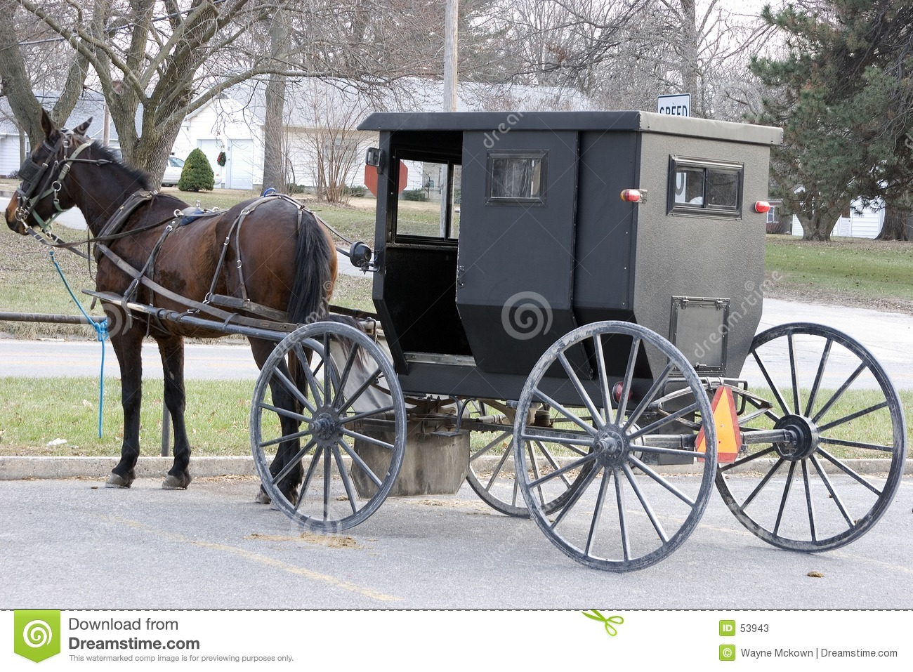 Amish Wagon Parts : Amish buggy harness get free image about wiring