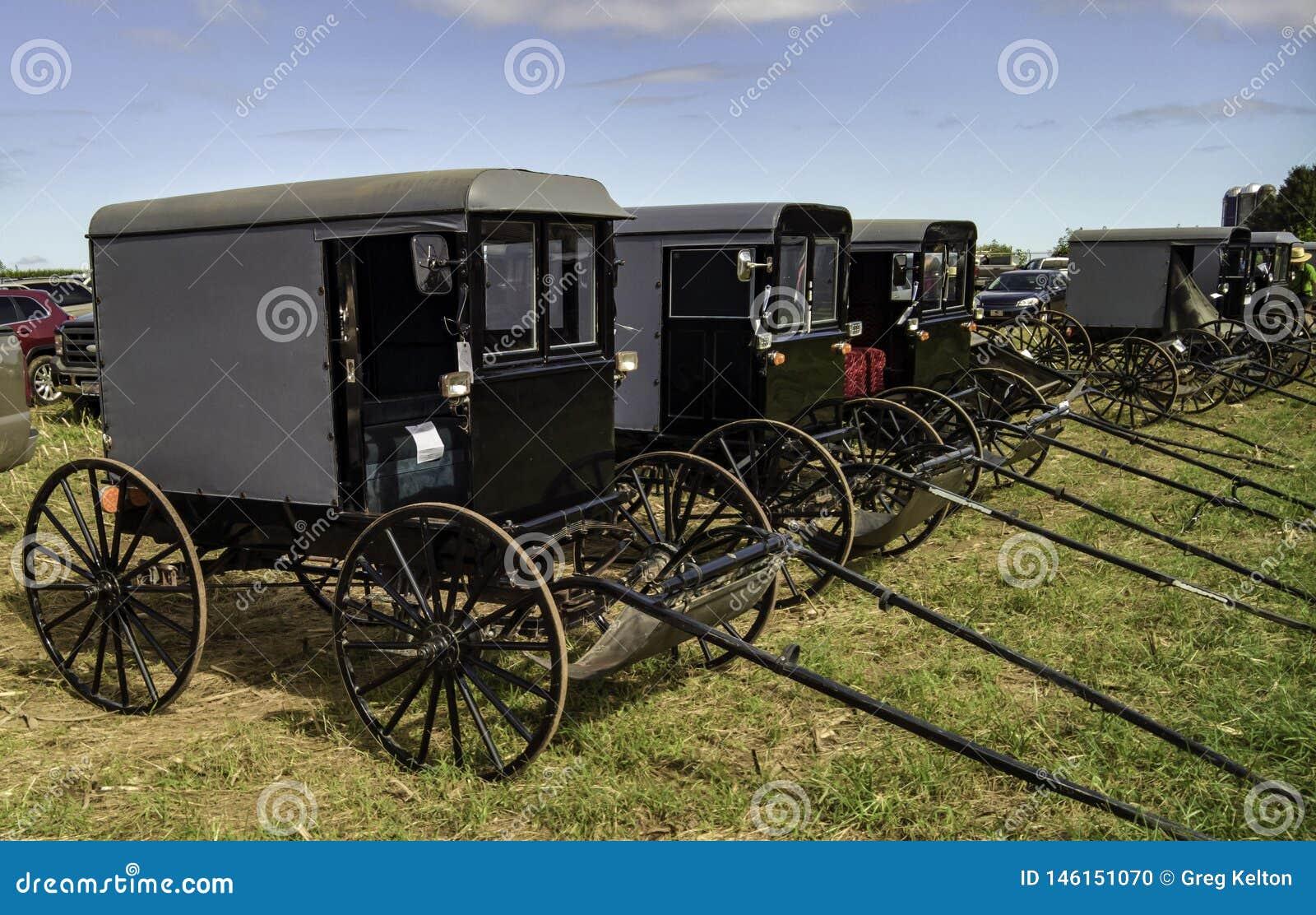 Amish spadku Borowinowa sprzeda? 4