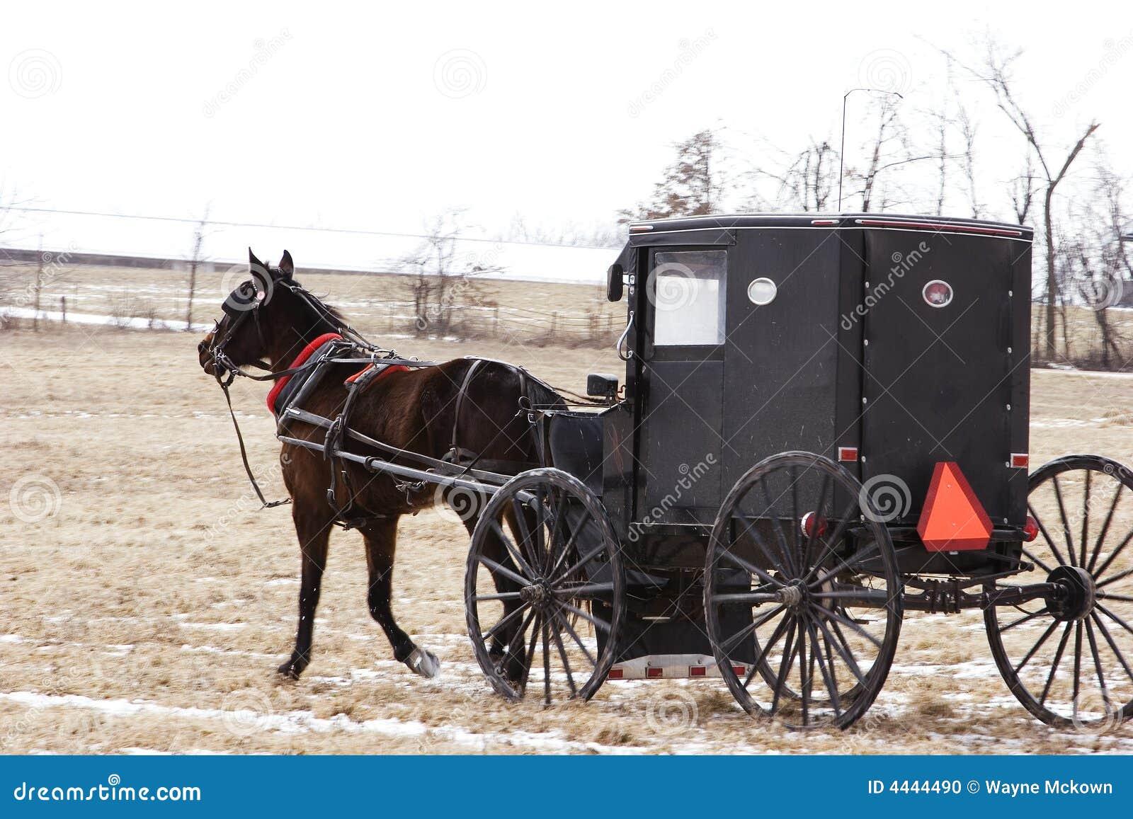 Amish Transportation Stock Photo Image 4444490