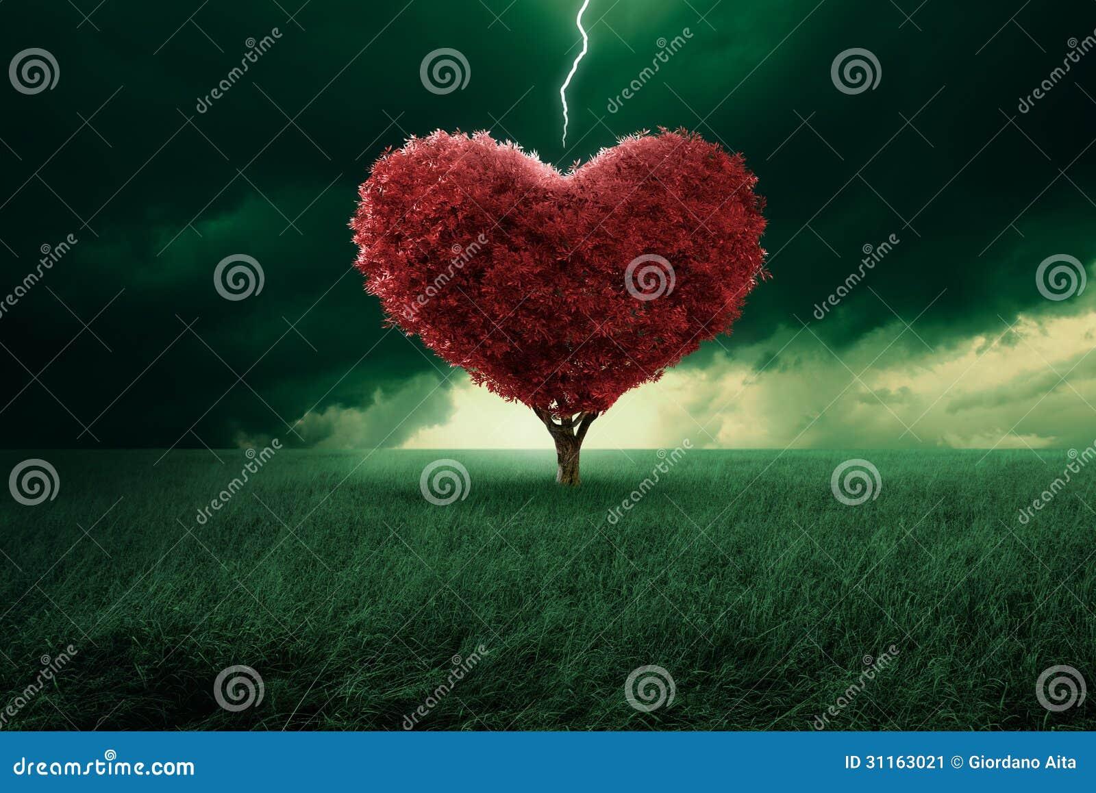 Amor na primeira vista
