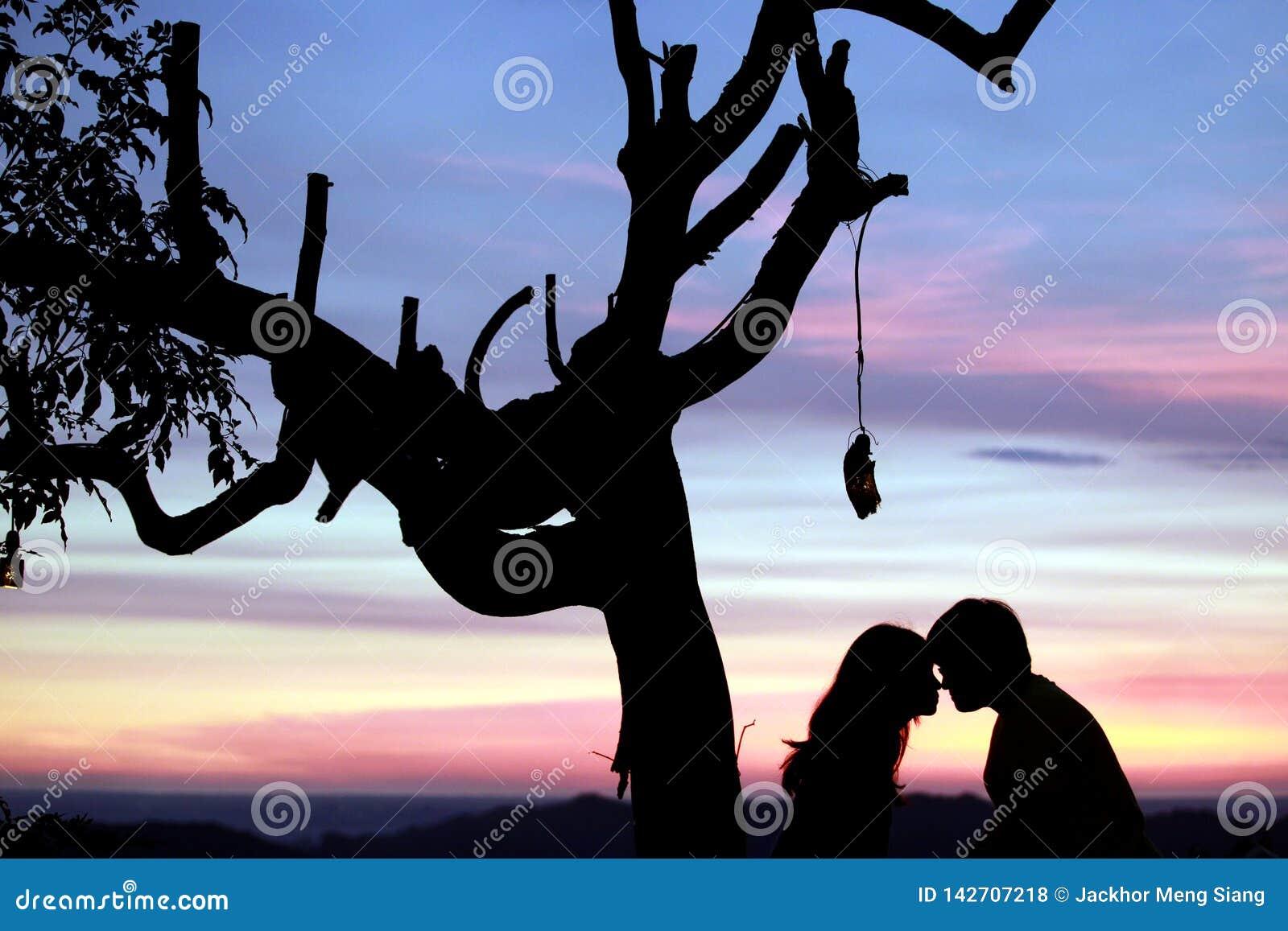 Amour dans le coucher du soleil
