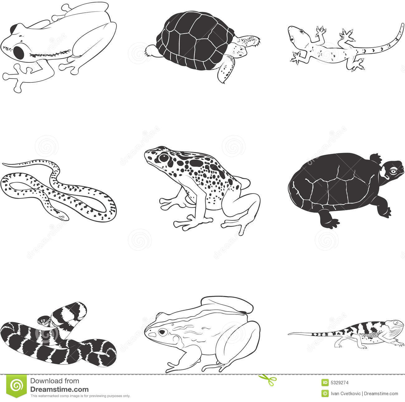 Amphibians and reptiles stock vector. Illustration of ...