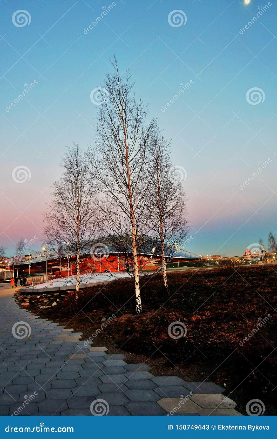 Amphitheater. Architecture of Zaryadye park in Moscow. Popular landmark.