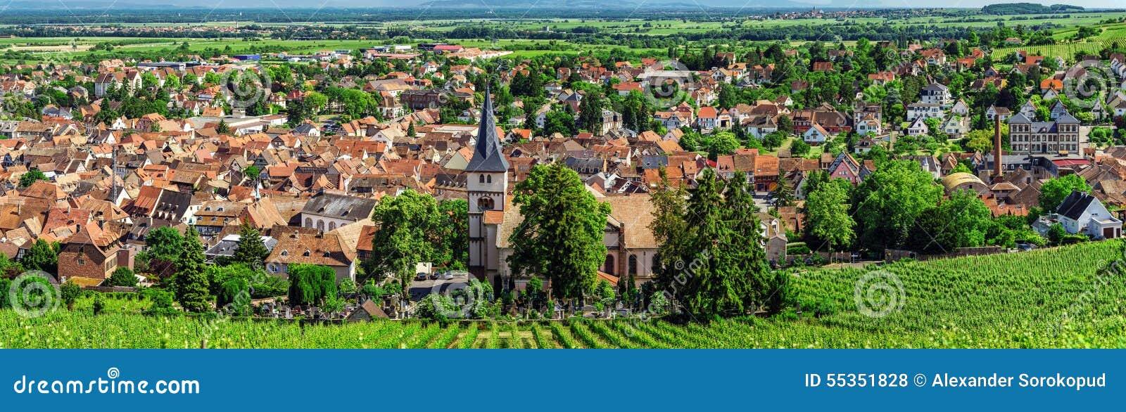 Ampia vista panoramica a Alsacevineyards, Francia