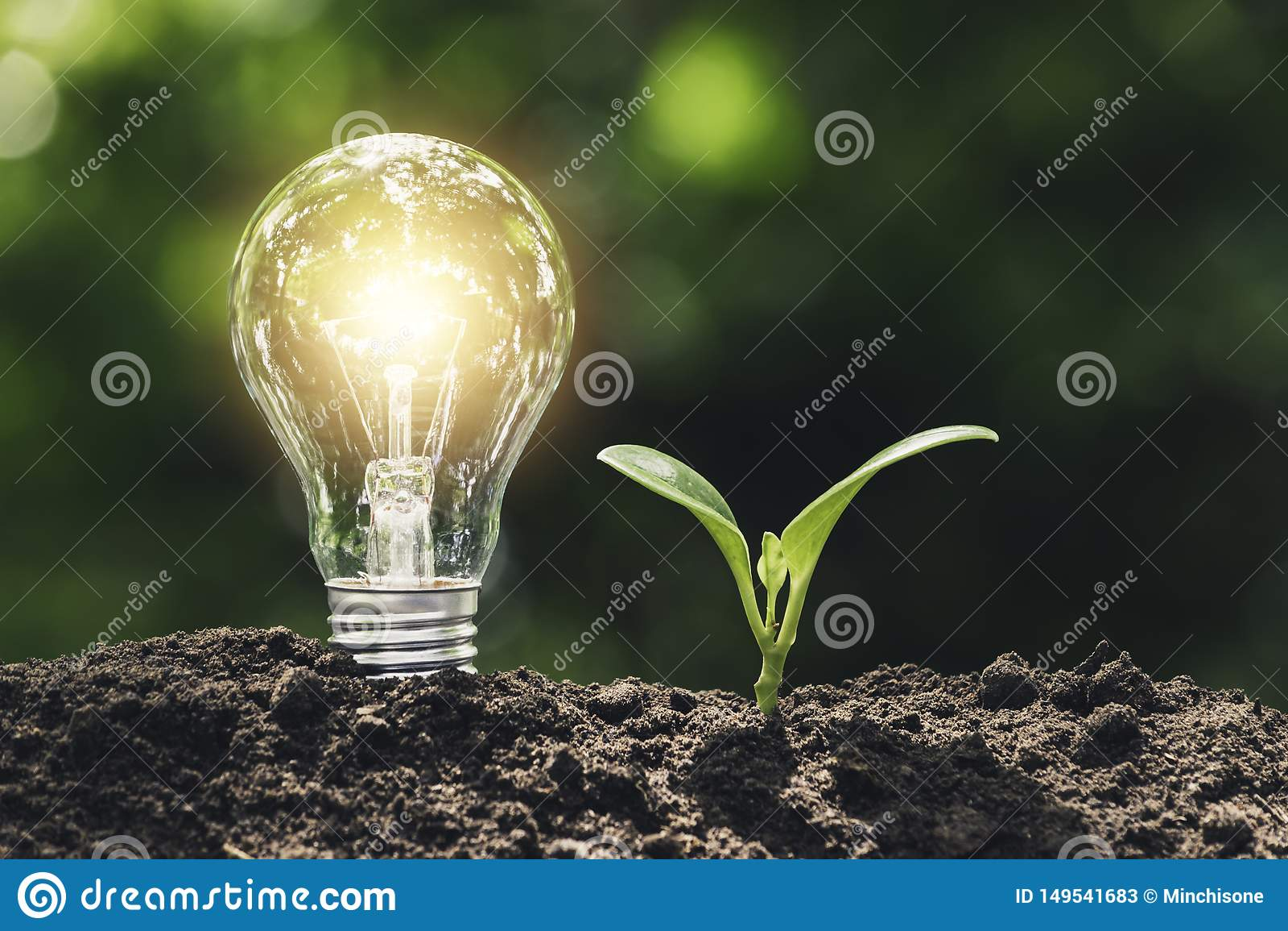 A ampola com a planta nova para o conceito da energia p?s sobre o solo no fundo verde macio da natureza