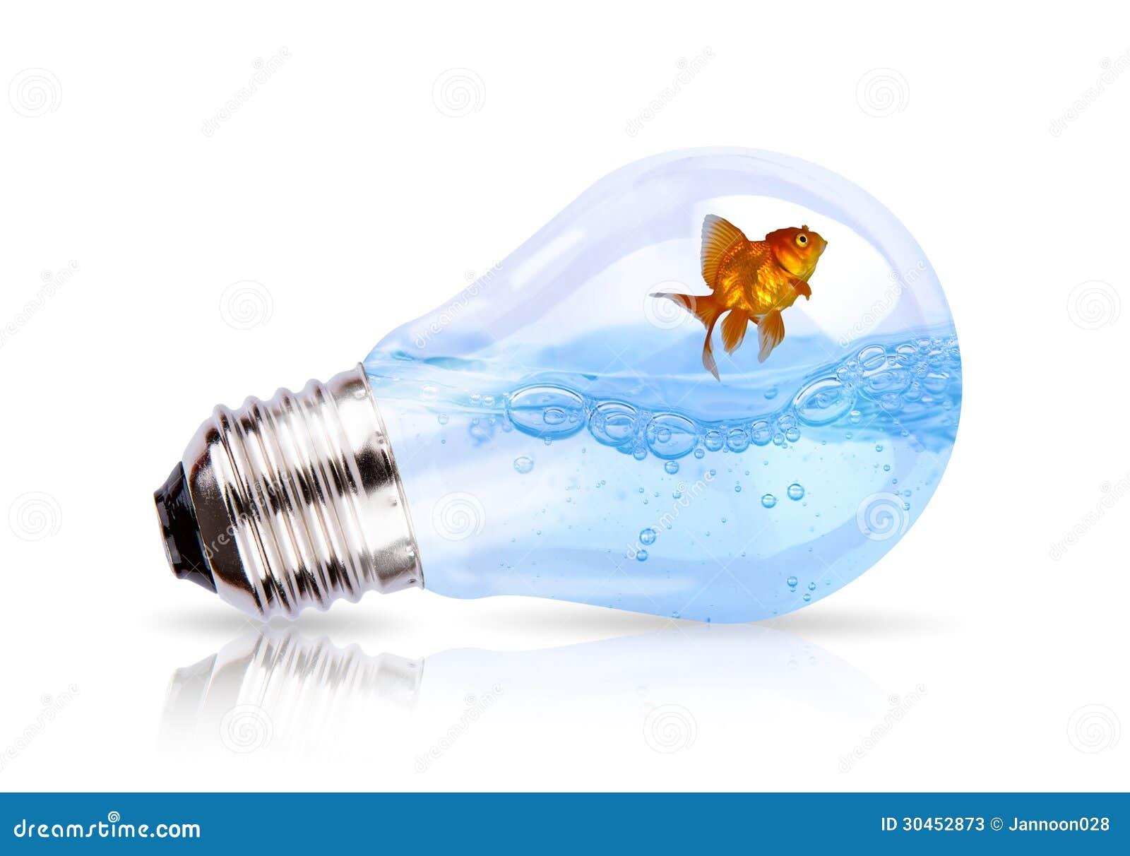 ampoule avec leau et des poissons lintrieur sur le fond blanc lit a eau - Lit A Eau Avec Poisson