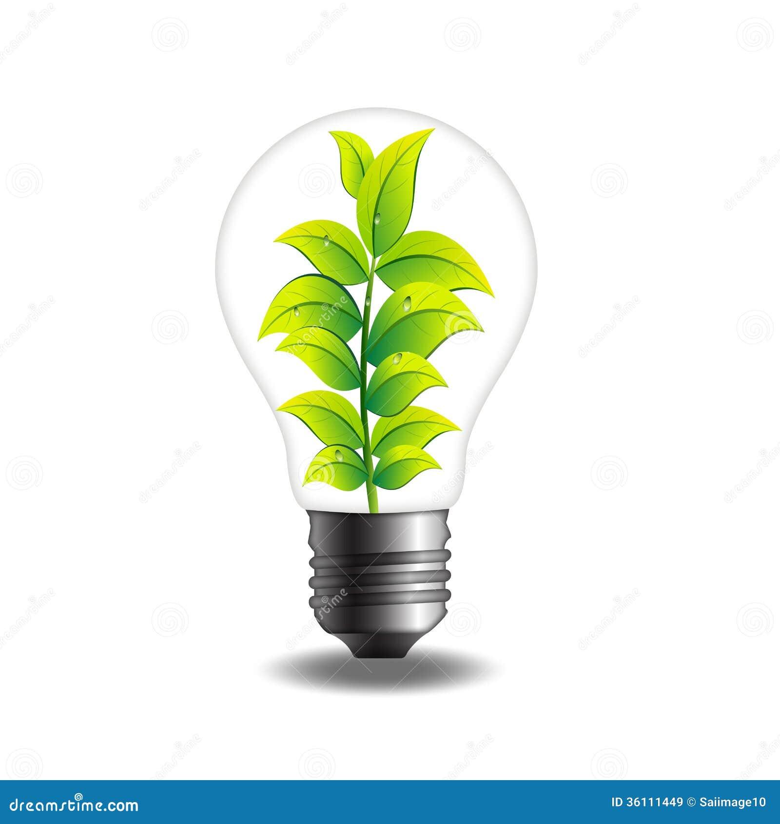 ampoule de plante verte illustration stock illustration du d veloppez 36111449. Black Bedroom Furniture Sets. Home Design Ideas