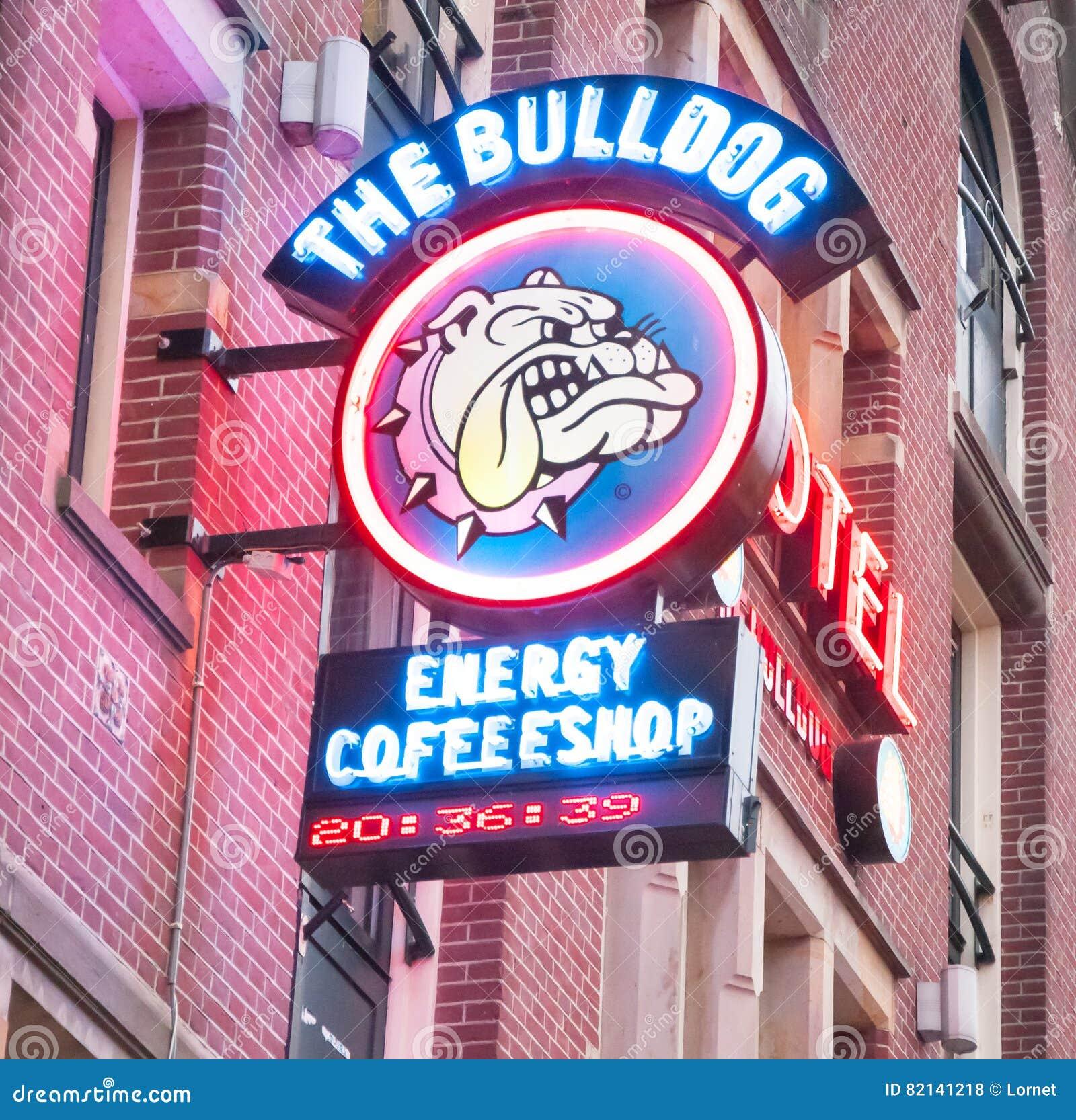 AMSTERDAM-APRIL 27: Tecken-bräde för Amsterdam bulldoggcoffeeshop i bordellkvarter på April 27,2015, Nederländerna