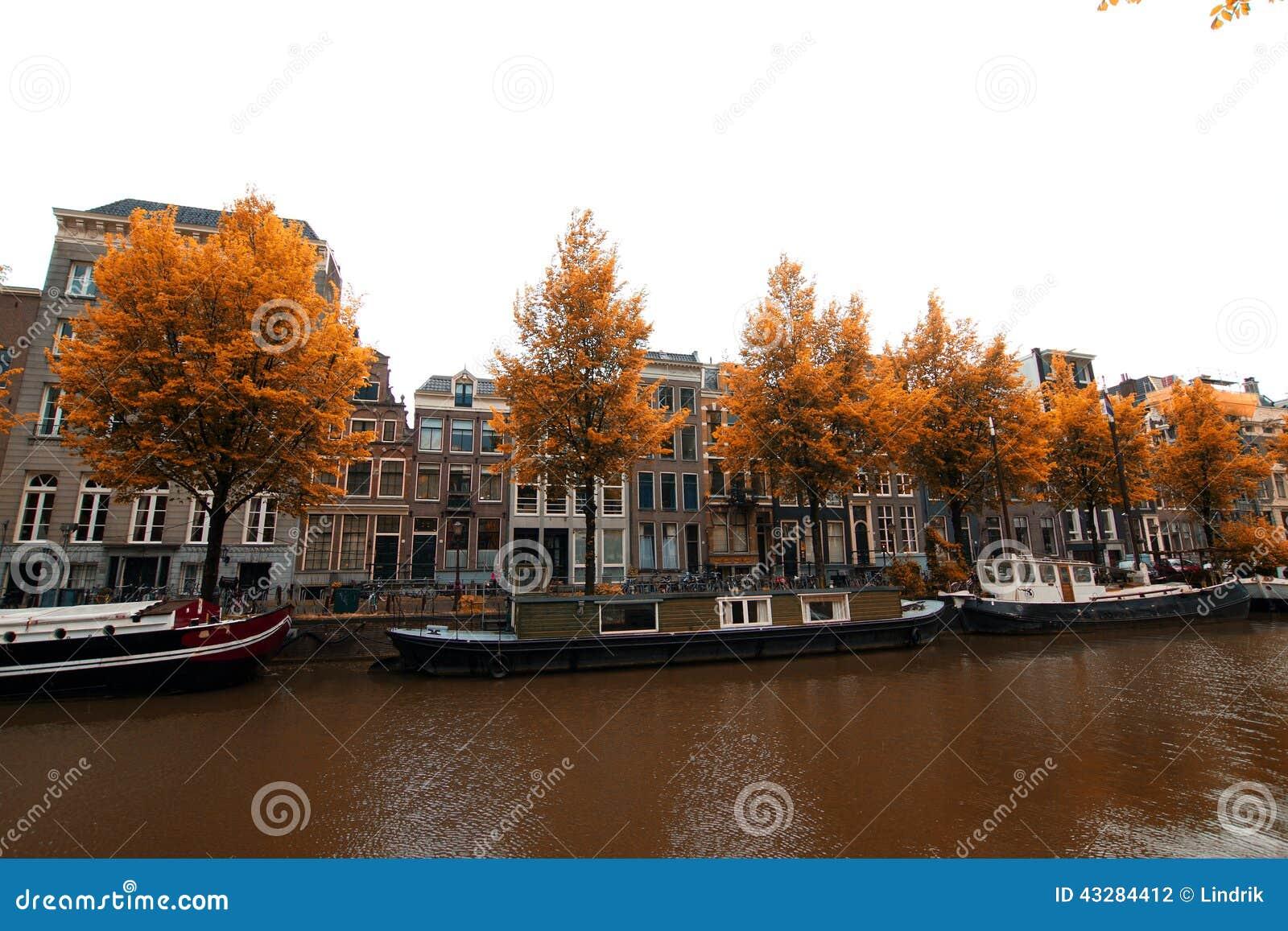 Amsterdam Stock Photo Image 43284412