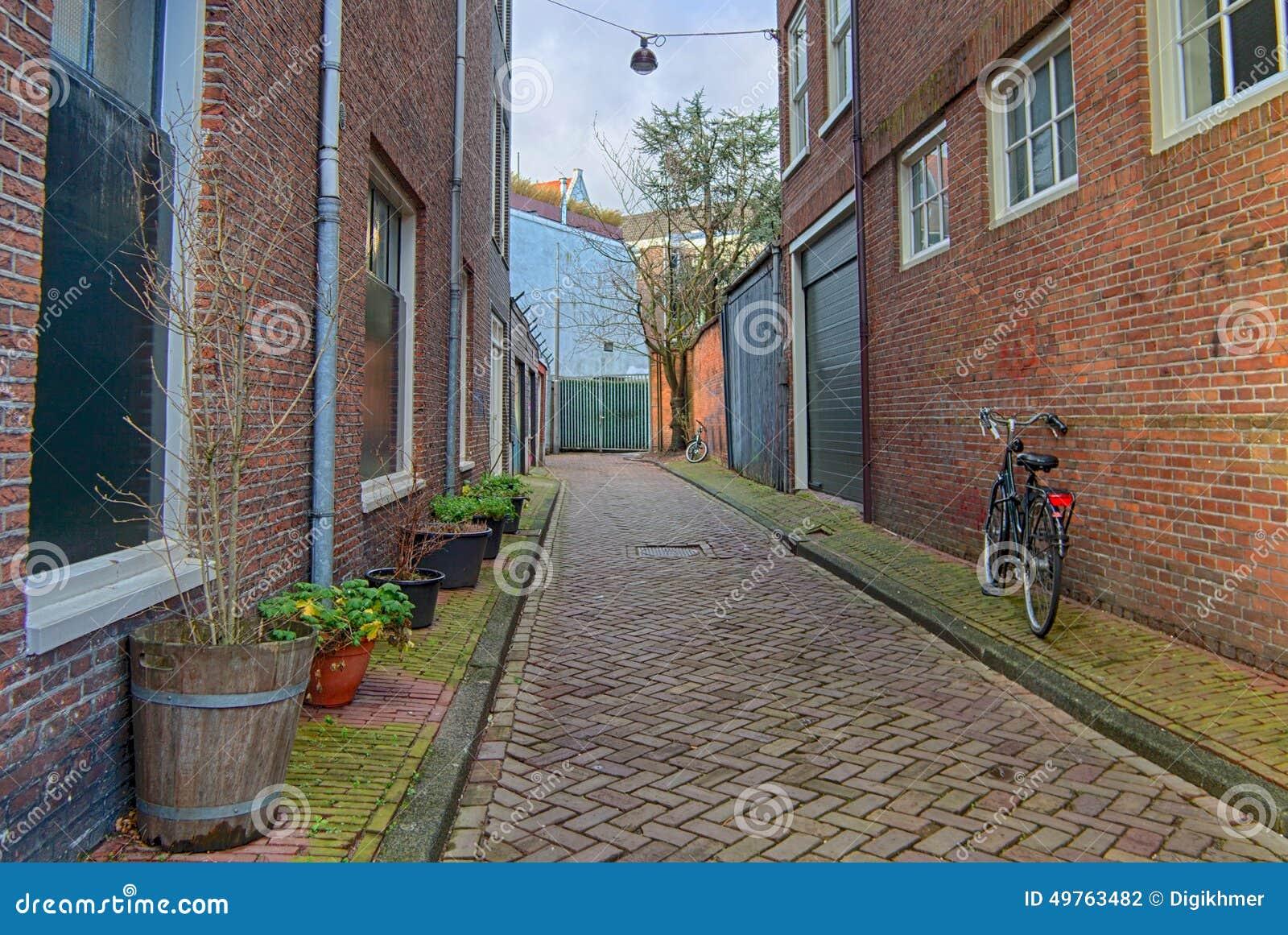 Amsterdam green street life