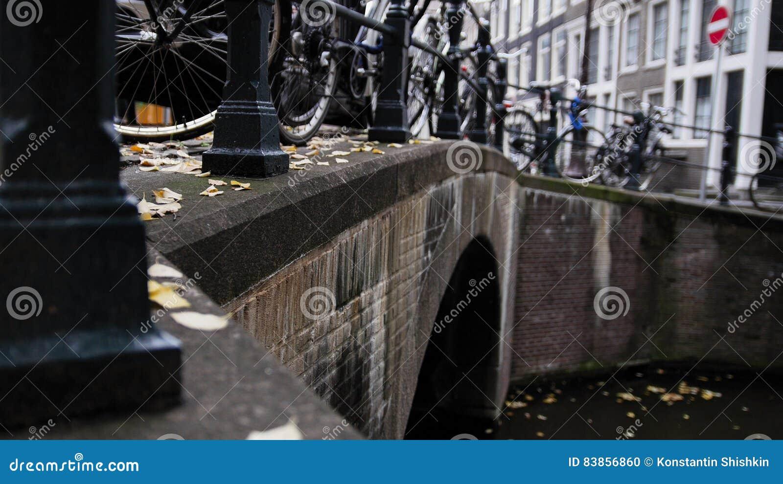 Amsterdam kanal, otta, molnig dag, höst, detaljer - bro, cyklar, turister
