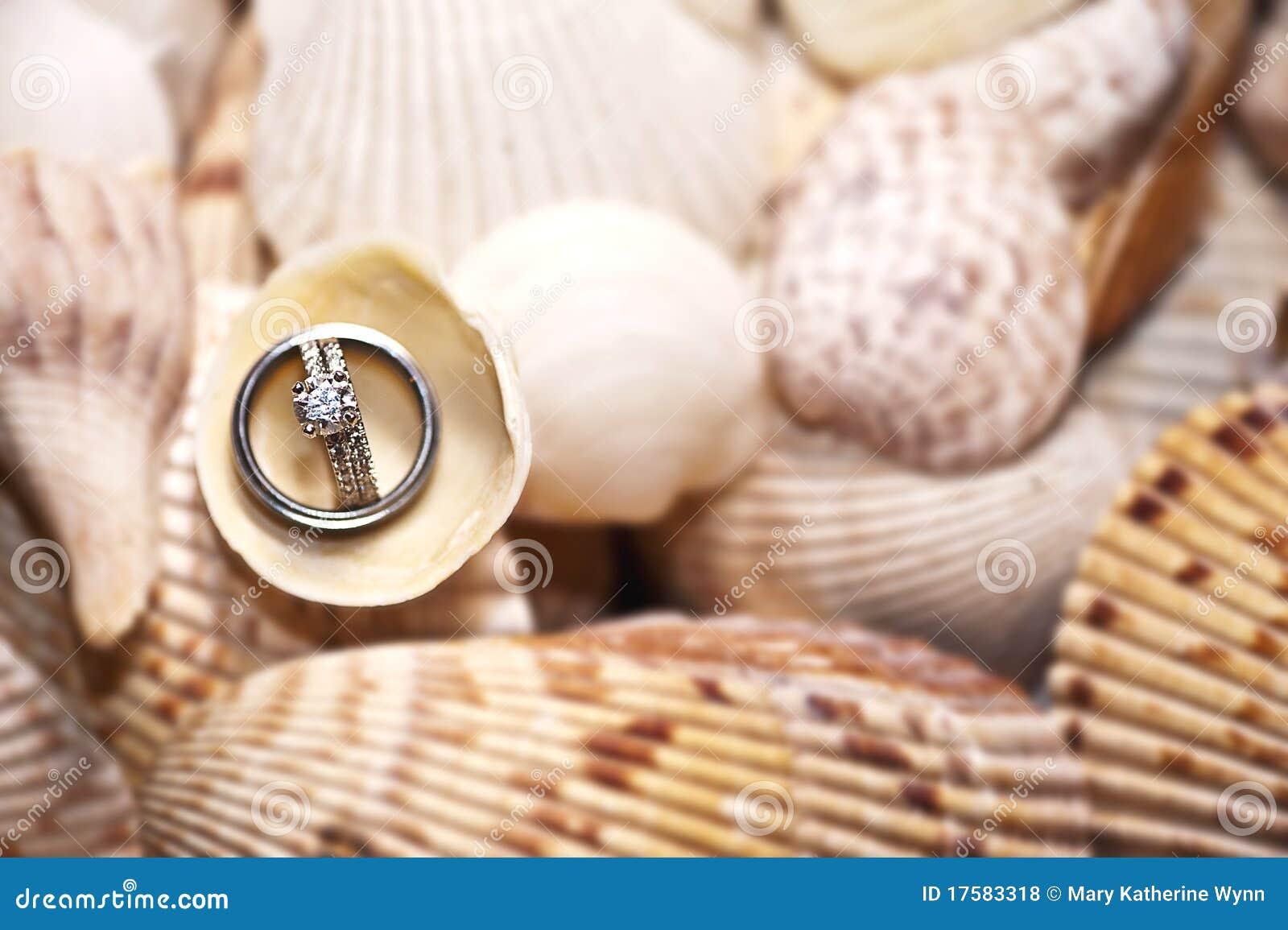 Anéis de casamento em escudos