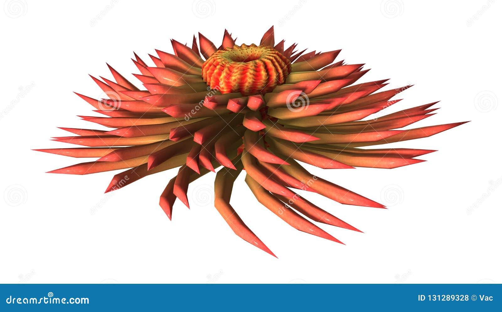 Anémona de mar de la representación 3D en blanco