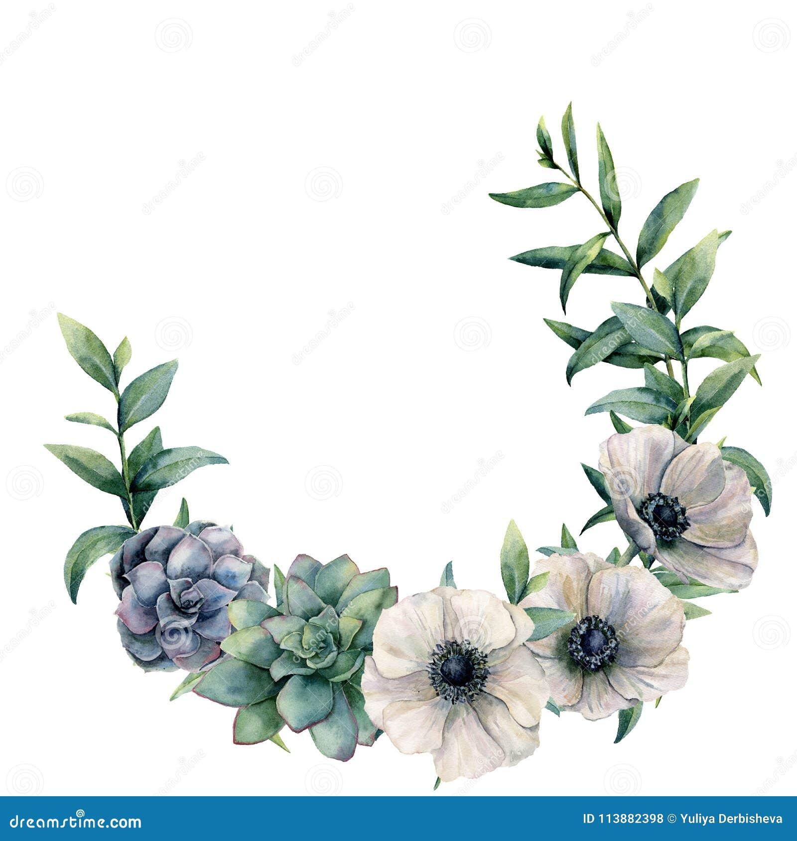 Anêmona da aquarela e grinalda suculento Flores pintados à mão e folhas brancas, verdes, azuis do eucalipto isoladas no branco