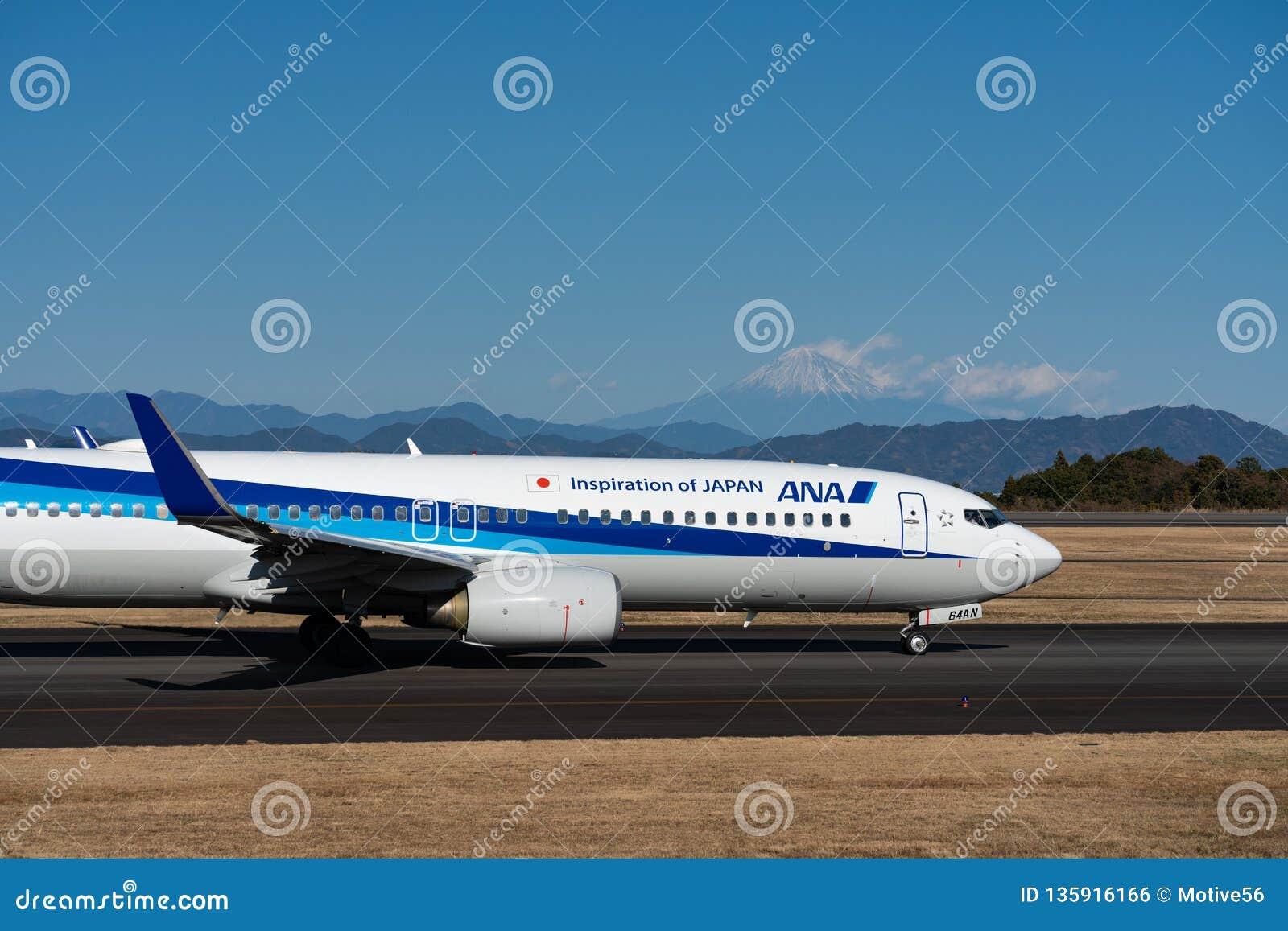 ANA Boeing 737-800 besteuernd