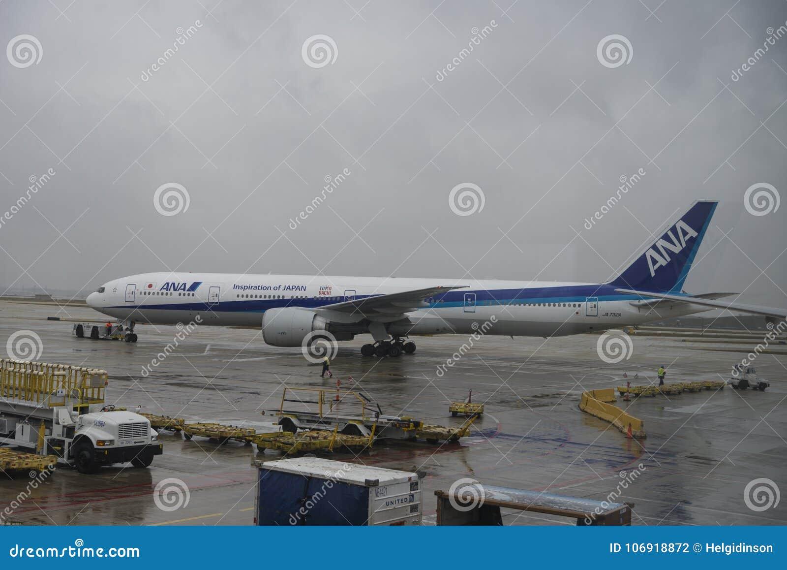 ANA samolot