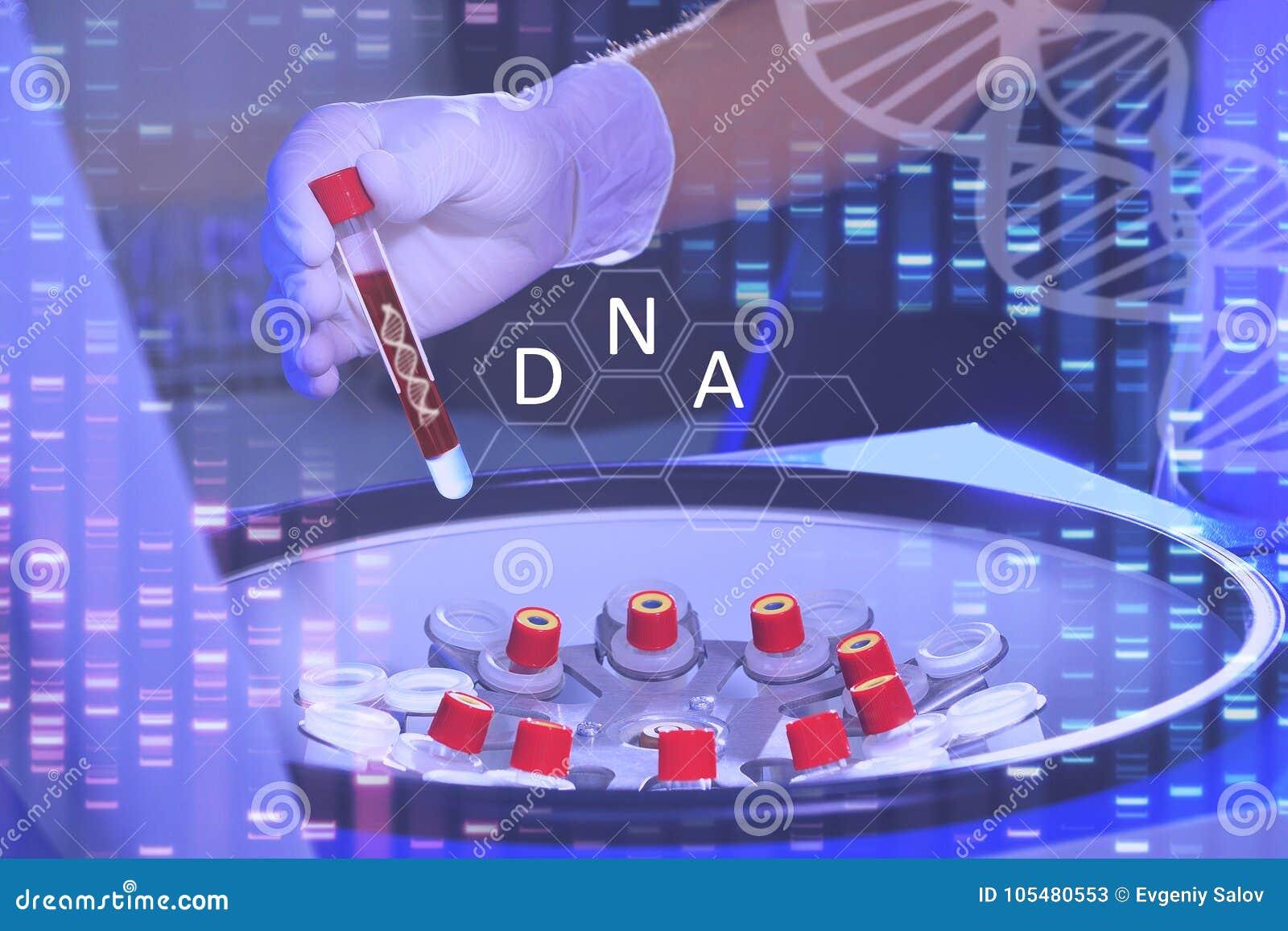 Analyse van dnk Dien een medische handschoen in houdt een reageerbuisverstand