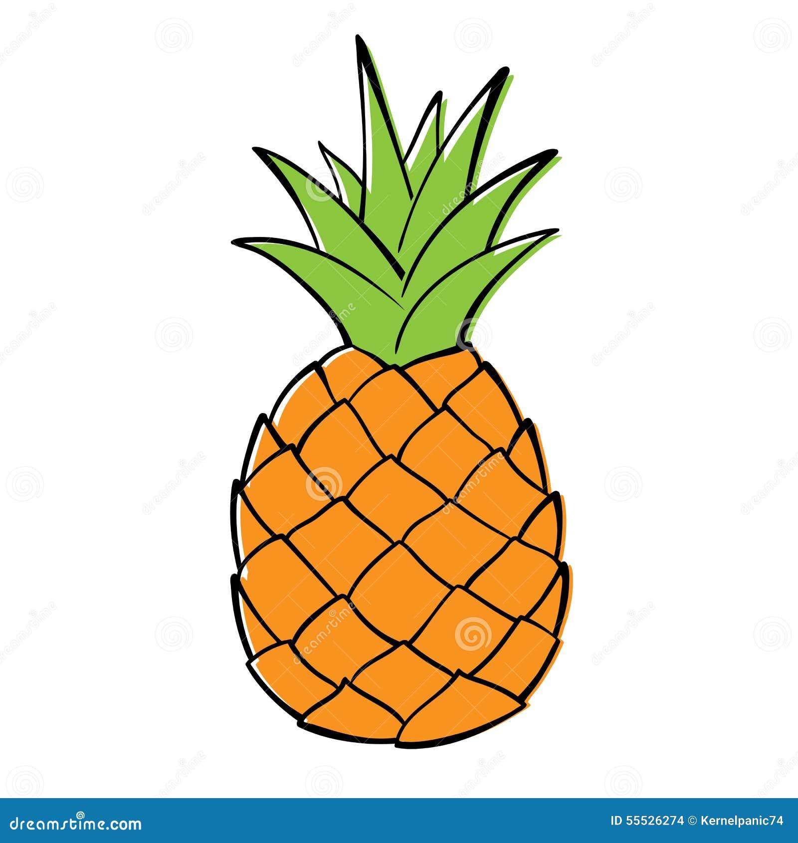 Ananas Illustration De Vecteur Illustration Du Objet 55526274