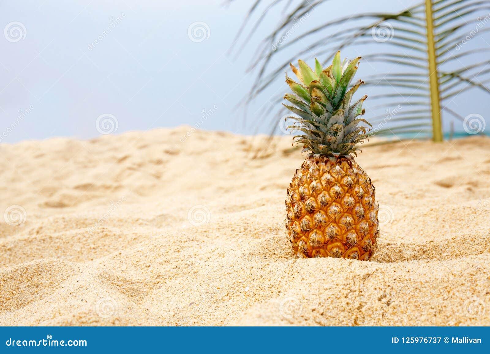 Ananas na piasku