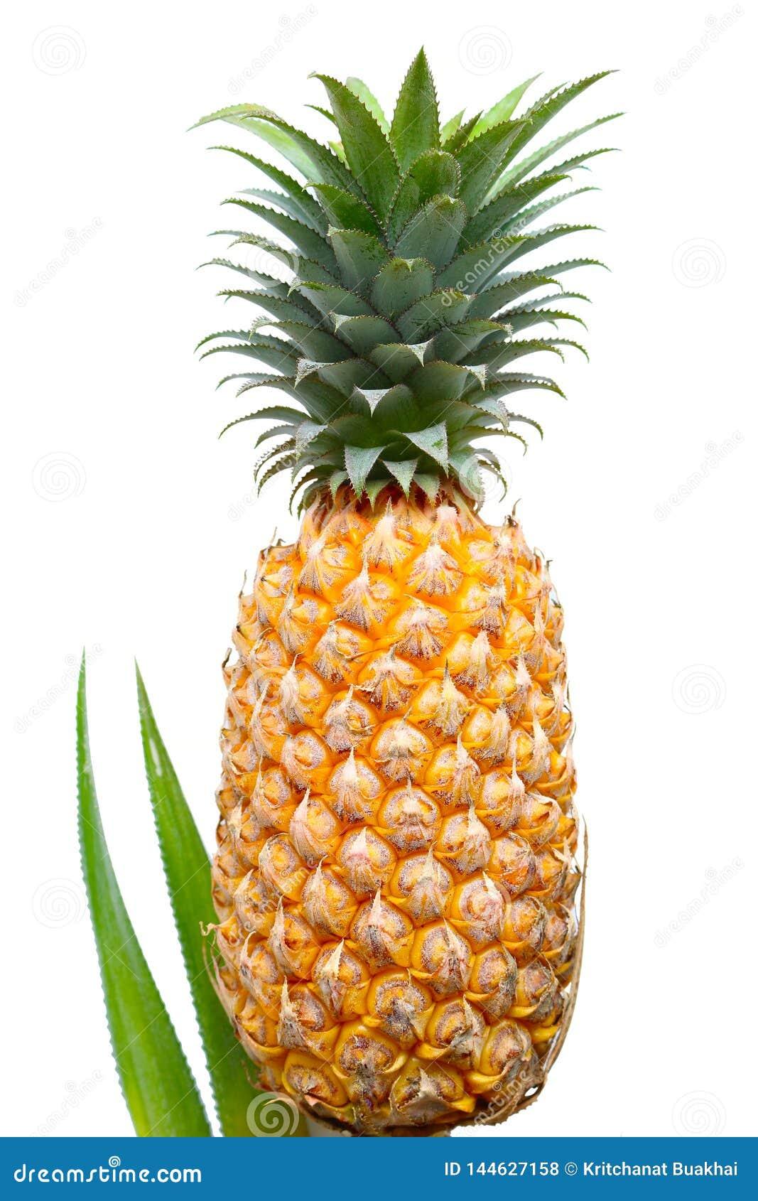 Ananas sur le fond blanc