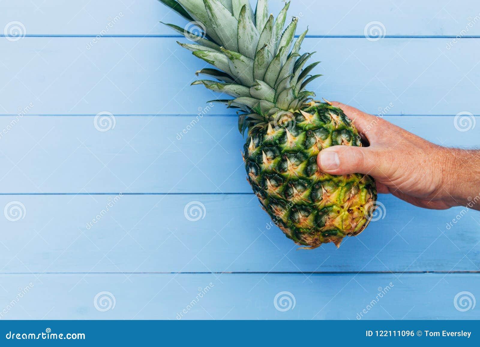 Ananasfruit op blauwe houten achtergrond ter beschikking wordt gehouden die