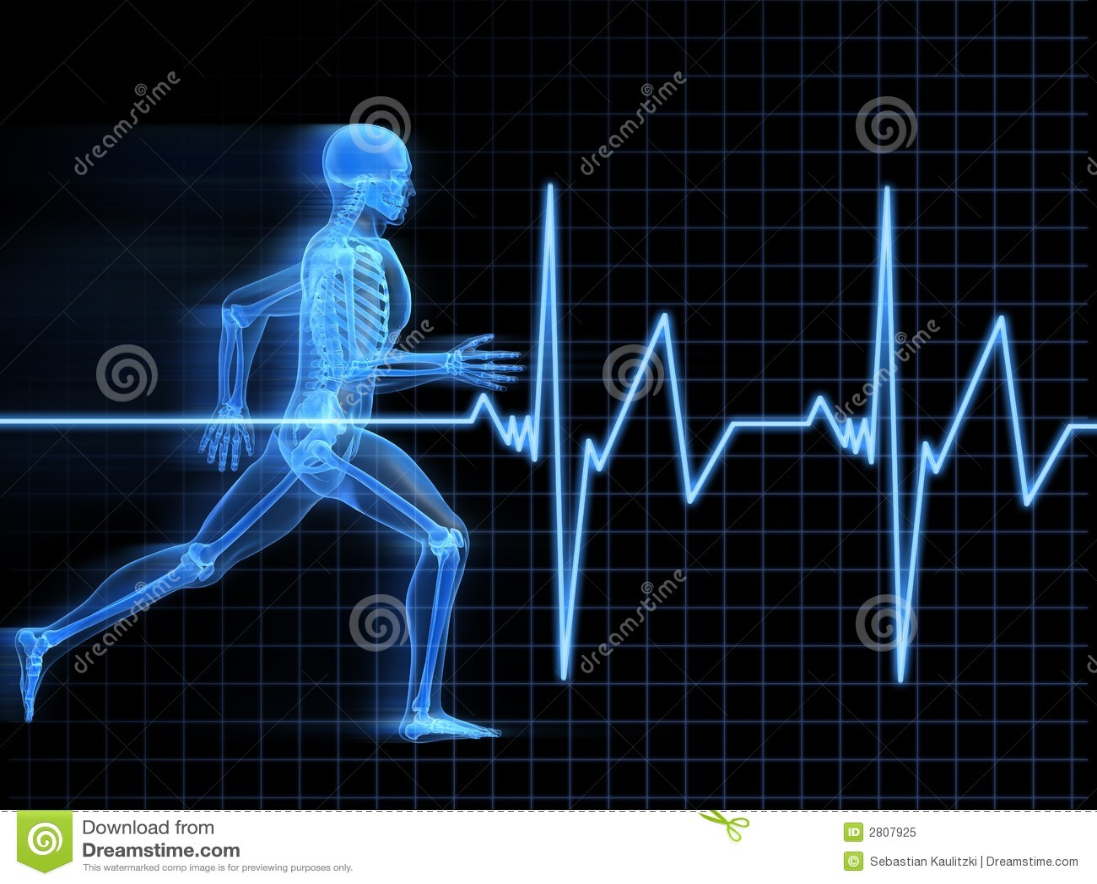 Anatomía Corriente Del Hombre Stock de ilustración - Ilustración de ...