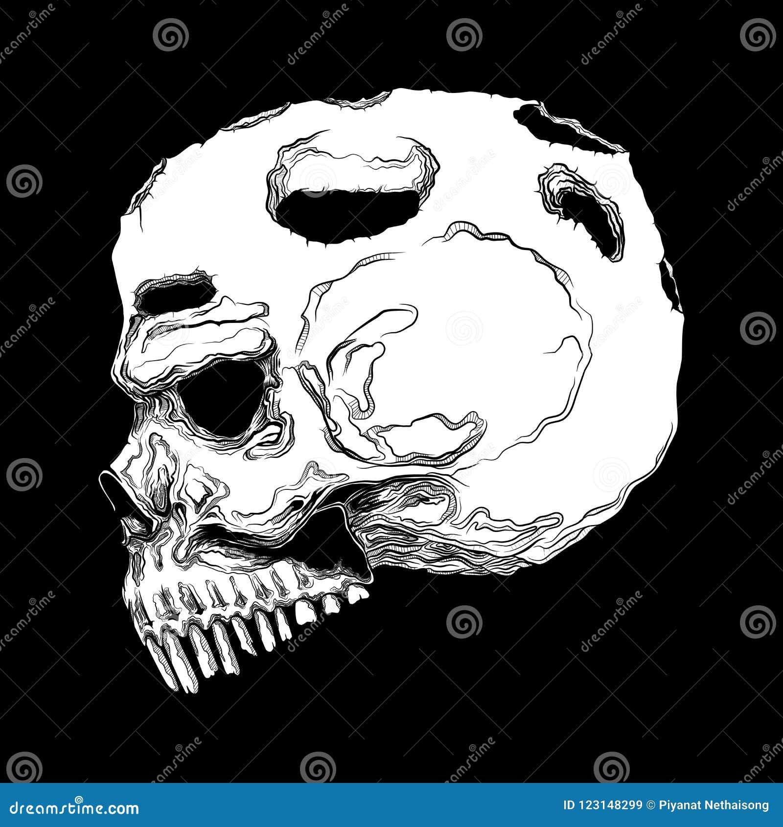 Anatomically Correct Human Skull Isolated Hand Drawn Line Art