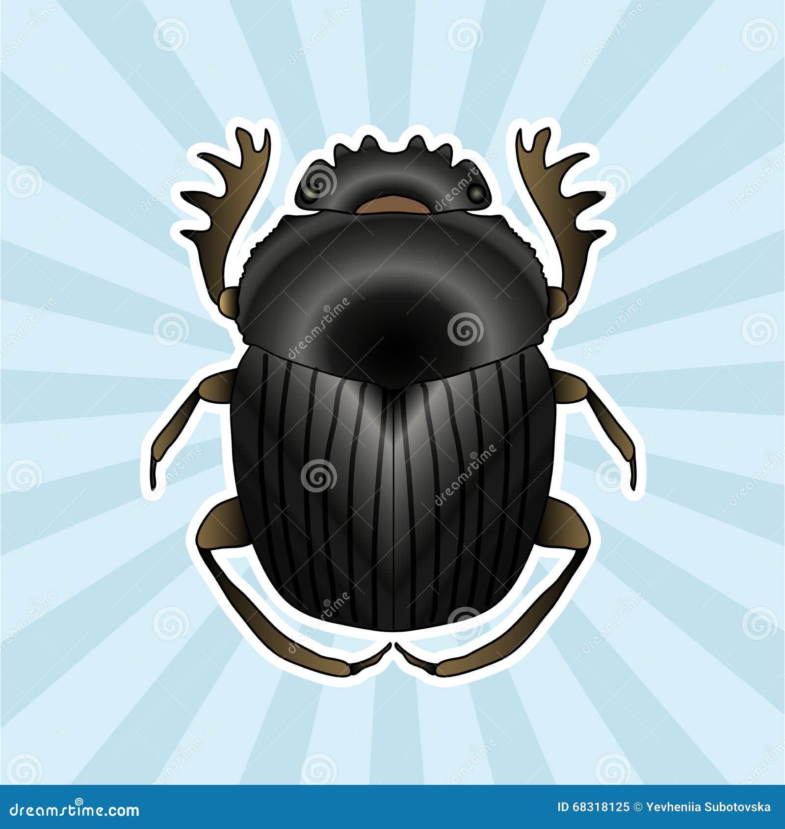 Anatomie D'insecte Dor-scarabée De Geotrupidae D'autocollant