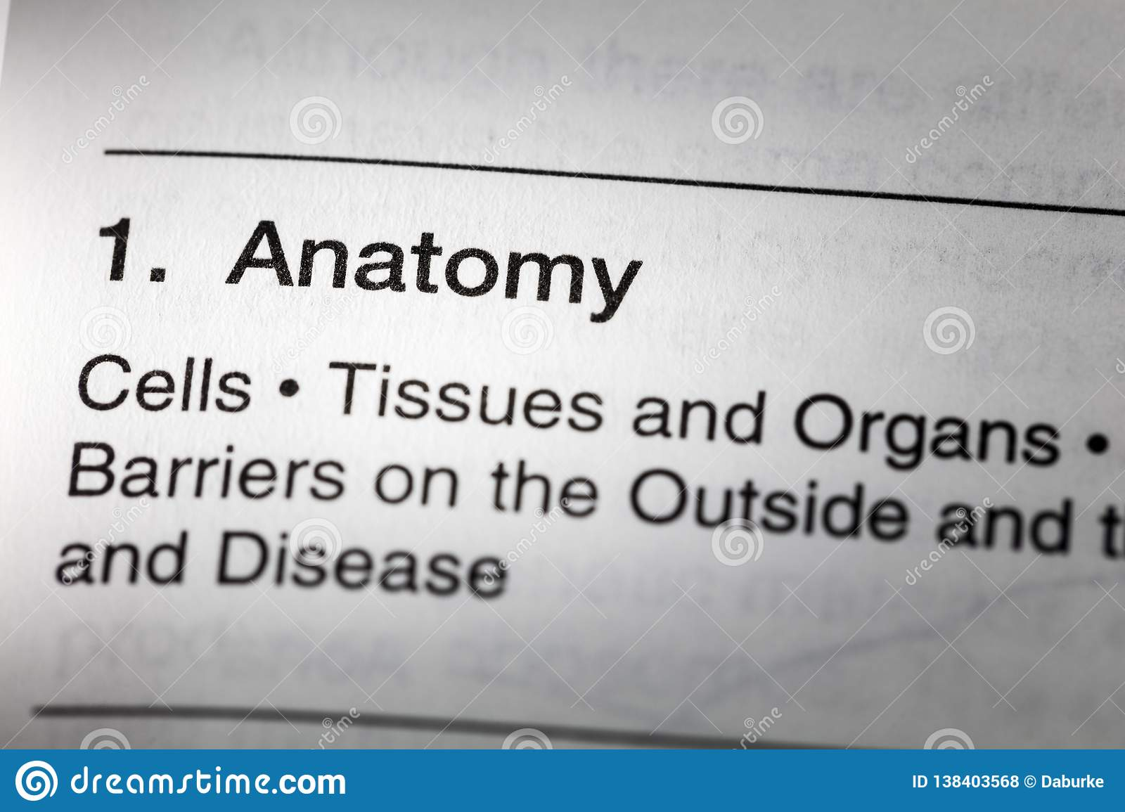 Anatomy Cells Tissues Organs Health Medical Definition Stock Photo