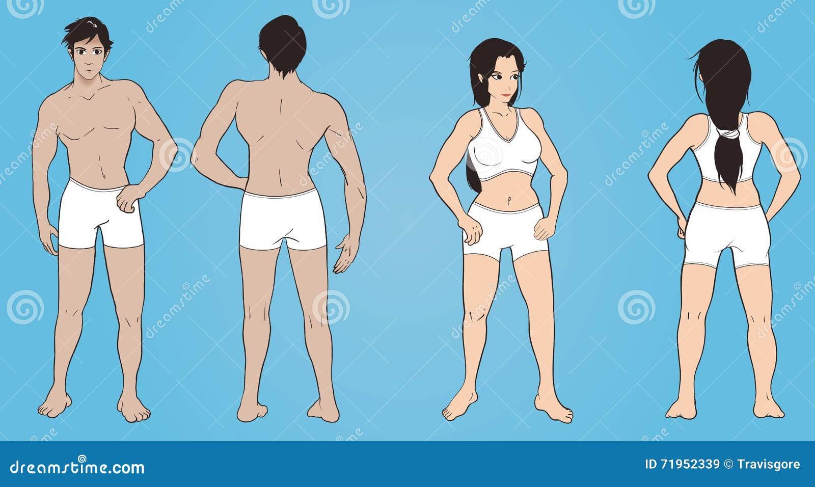 Female muscle strips