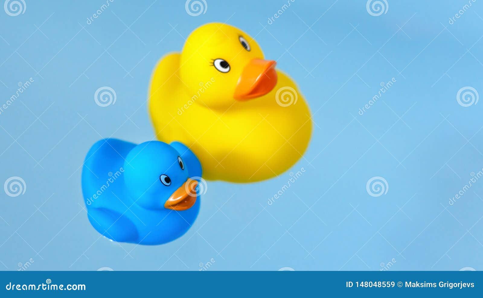 Anatre di gomma gialle e blu del bagno in acqua