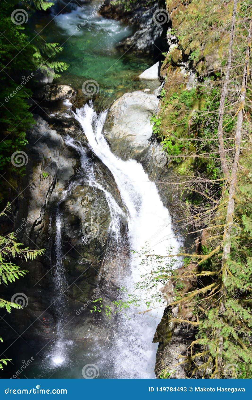 Anblickvattenfallsikten från upphängningbron i den Lynn kanjonen parkerar,