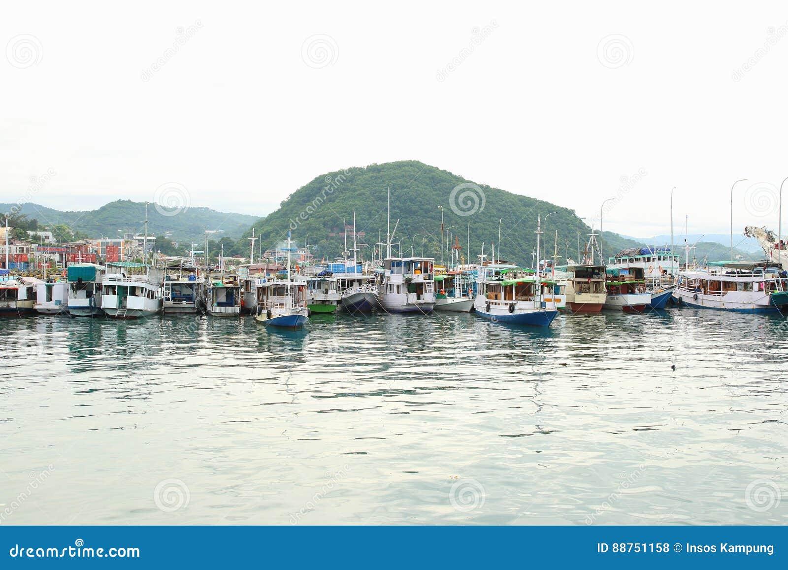 Anchored boats at the Harbor