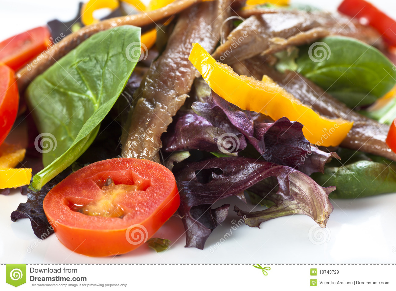 Anchovy Salad Royalty Free Stock Images - Image: 18743729
