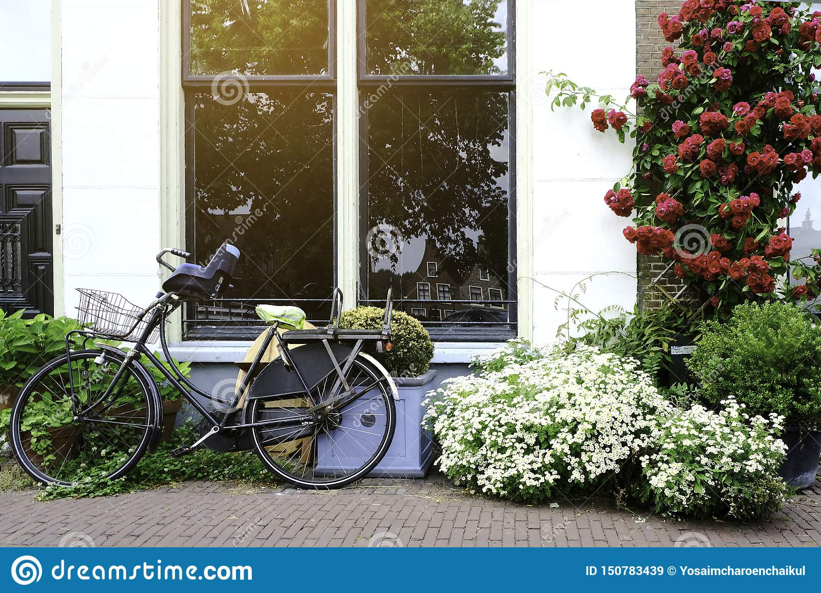 Ancient bikes parked in front of the house. Bicycle leaning on the big windows at roadside