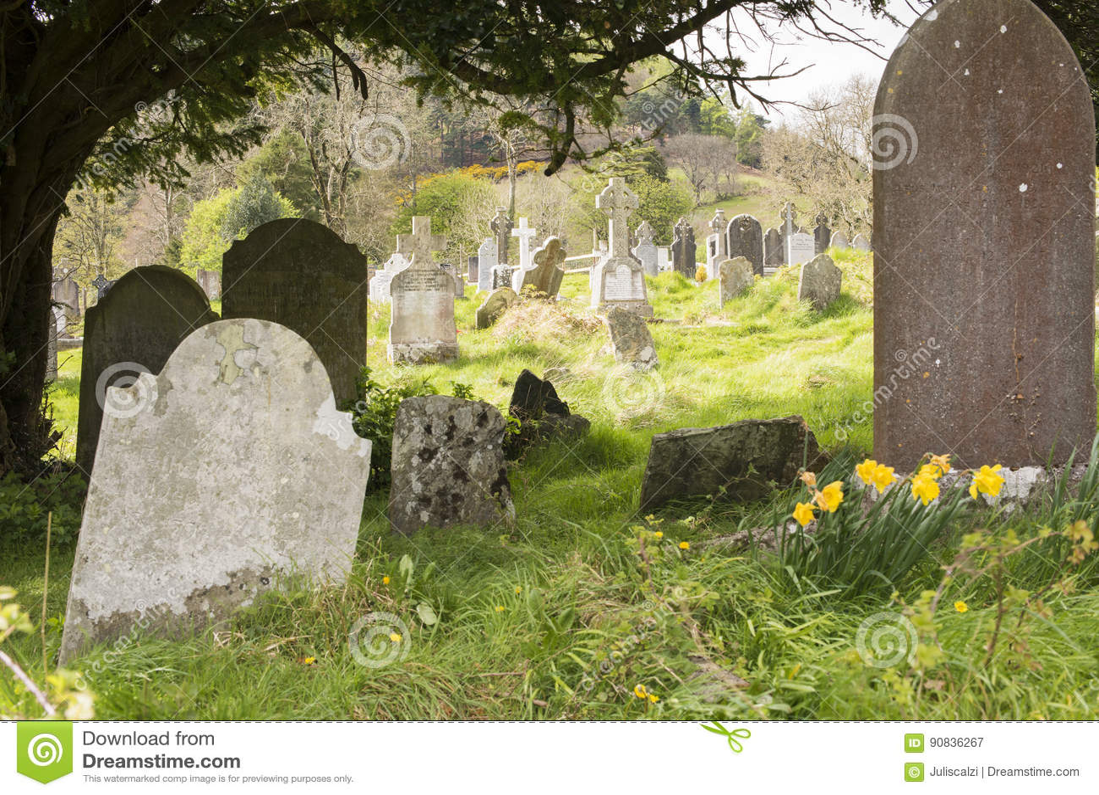 Magherafelt cemetery search