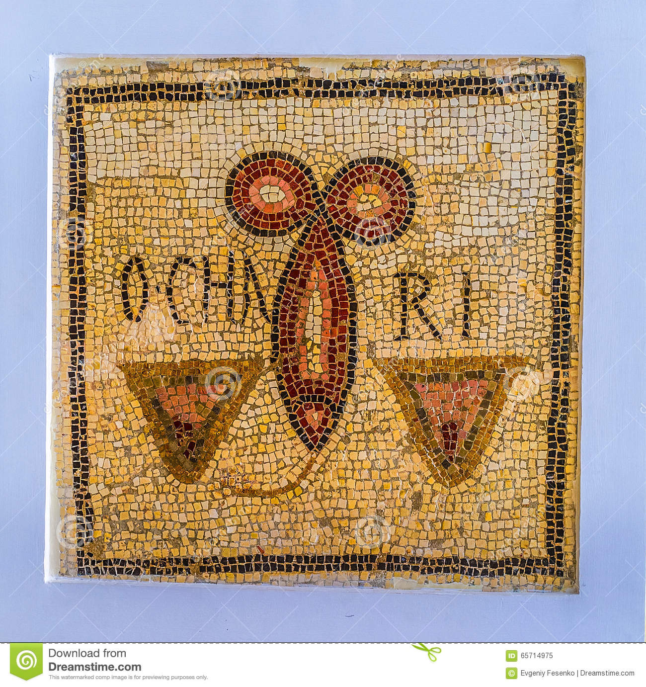 The ancient mosaic editorial image image of sightseeing 65714975 the ancient mosaic biocorpaavc