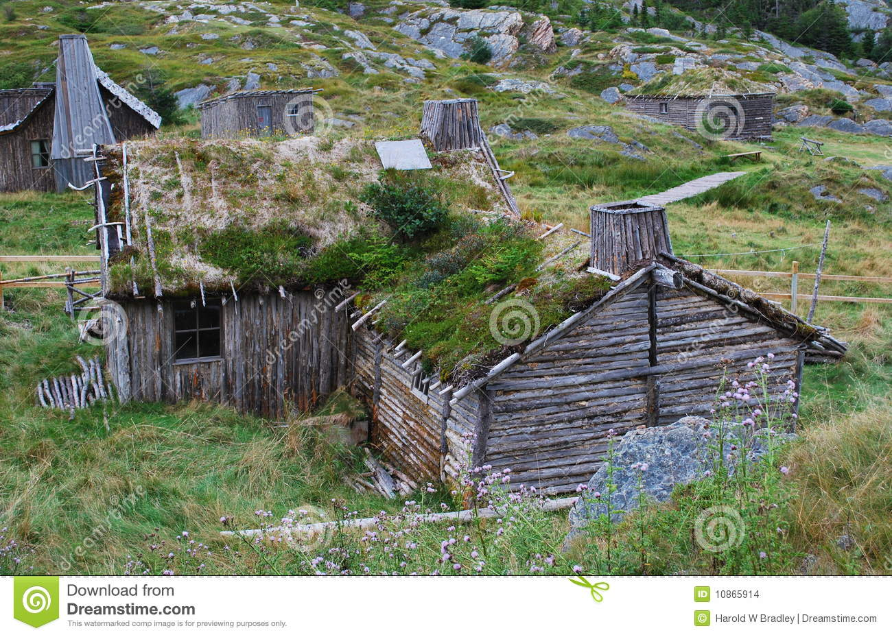 House Plans and Design  House Plans Canada Newfoundlandyear old house   grass growing on the roof in Newfoundland  Canada