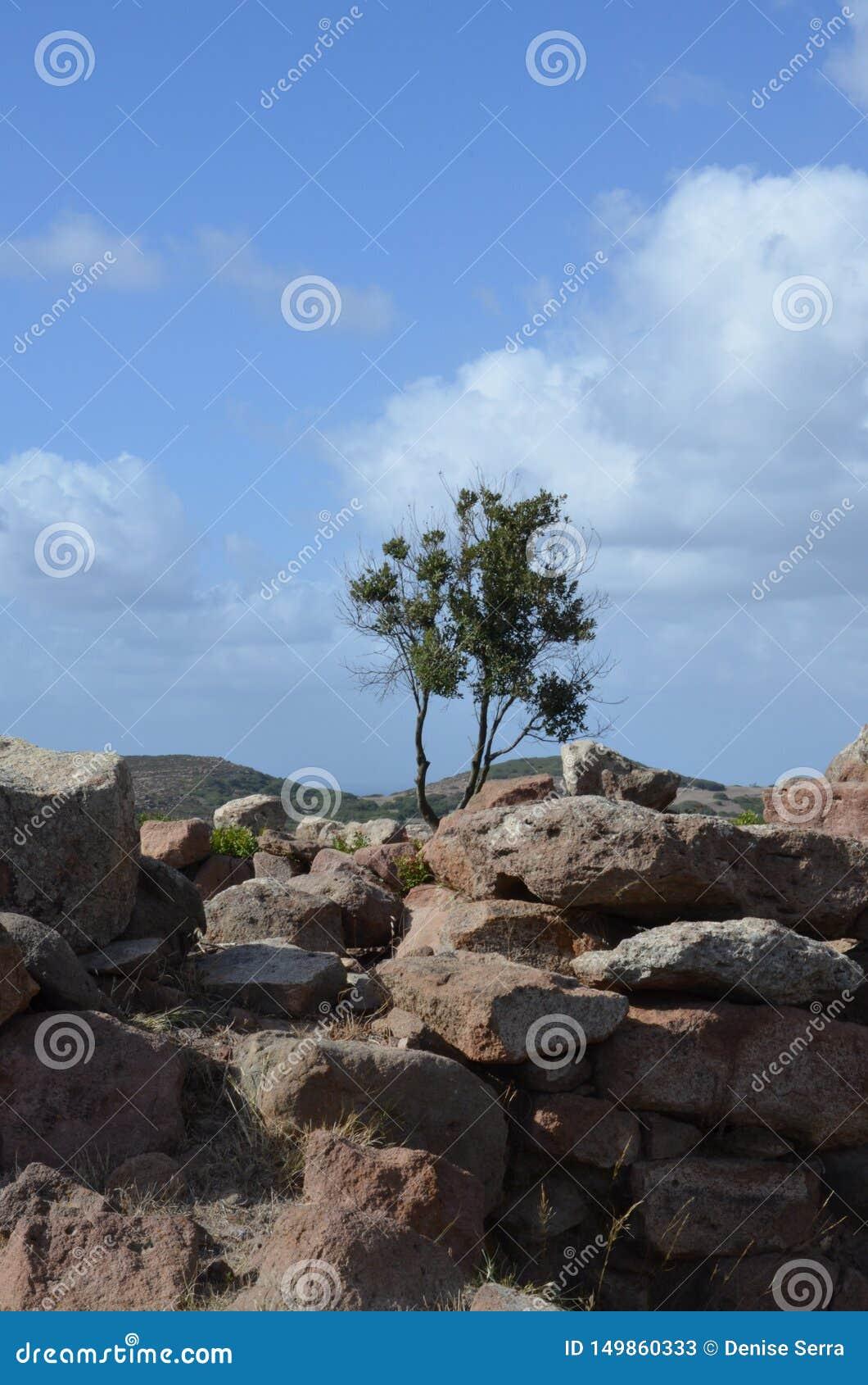 The ancient Nuraghe of Seruci, Sardinia