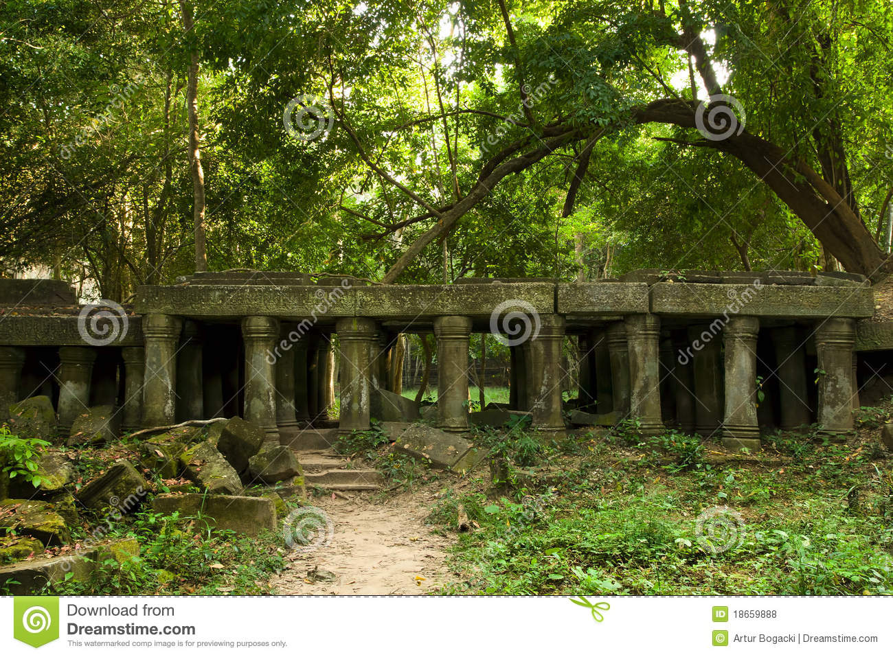 Gallery ancient ruins in forest