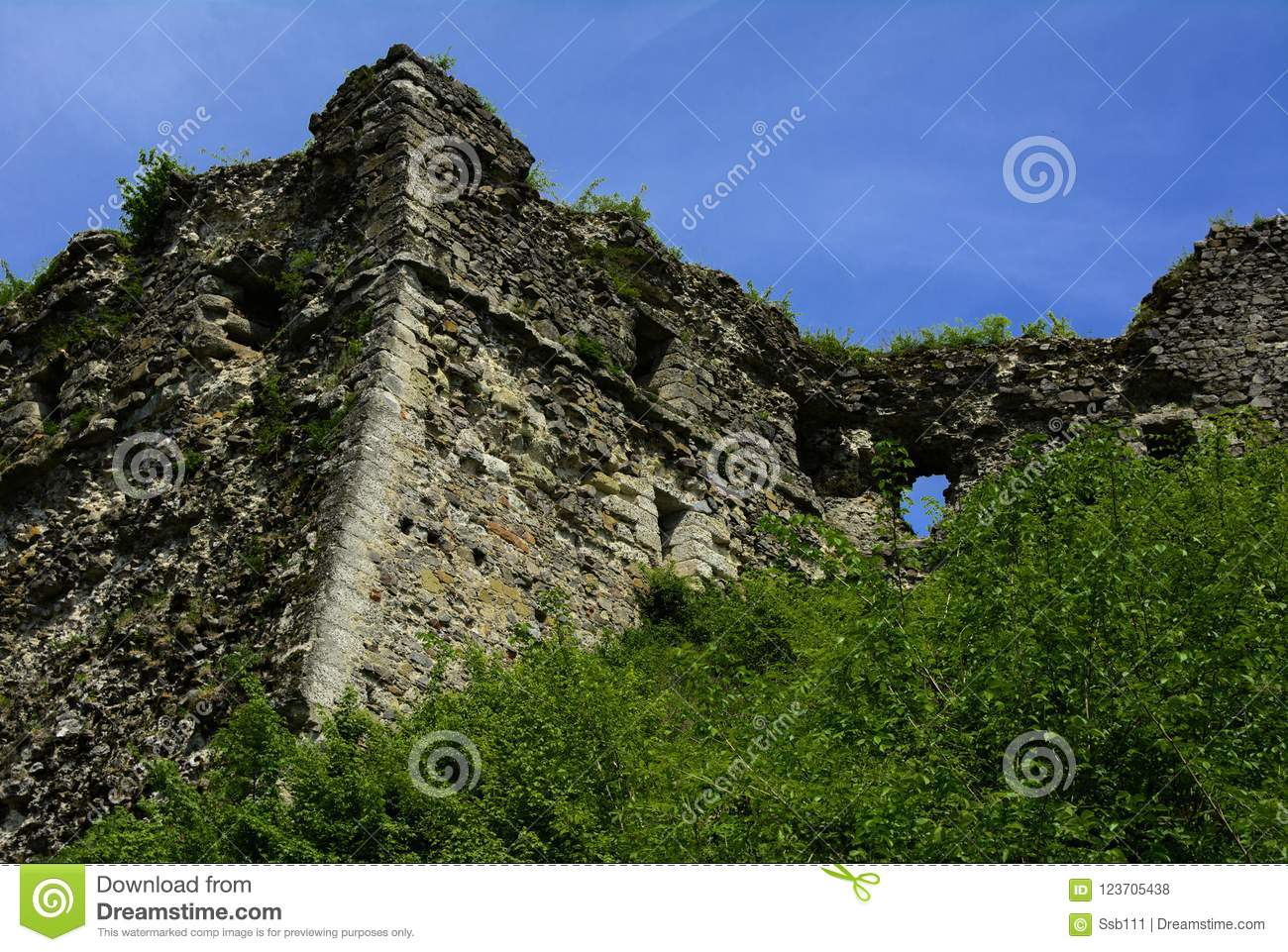 Ancient ruins of the castle of the town of Khust & x28;Dracula Castle