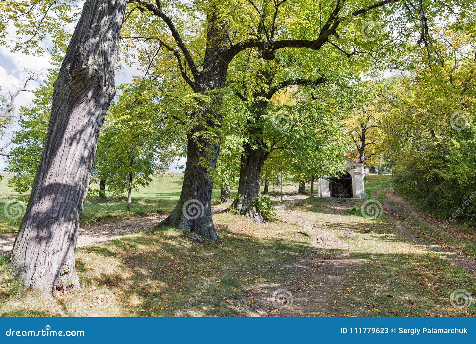Road to Calvary in Banska Stiavnica, Slovakia.