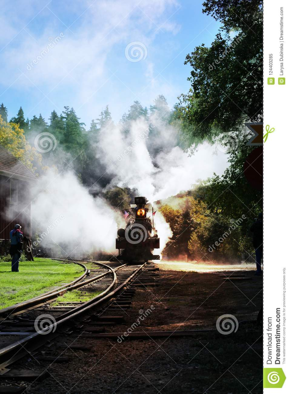 An ancient train moves along the rails releasing smoke in the sun in the forest