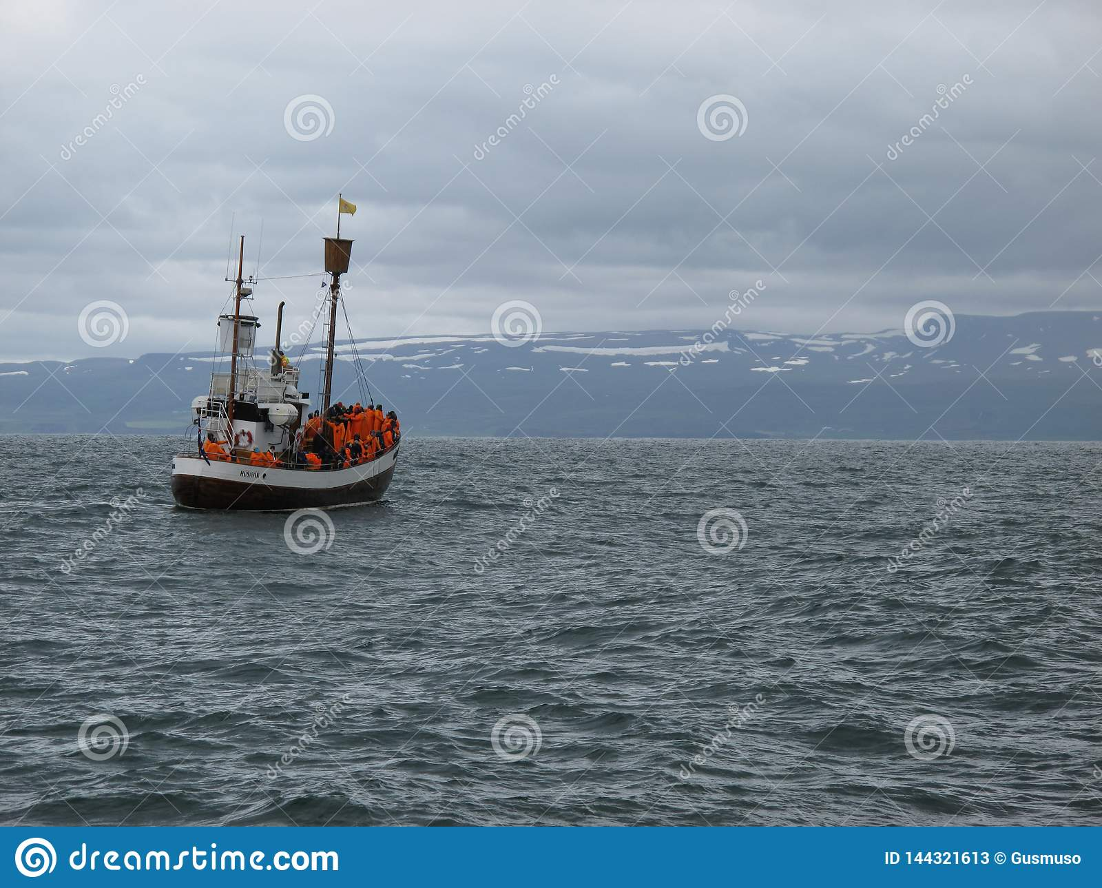 An ancient whaler sailing in Skjalfandi bay in northern Iceland near to Husavik looking for whales