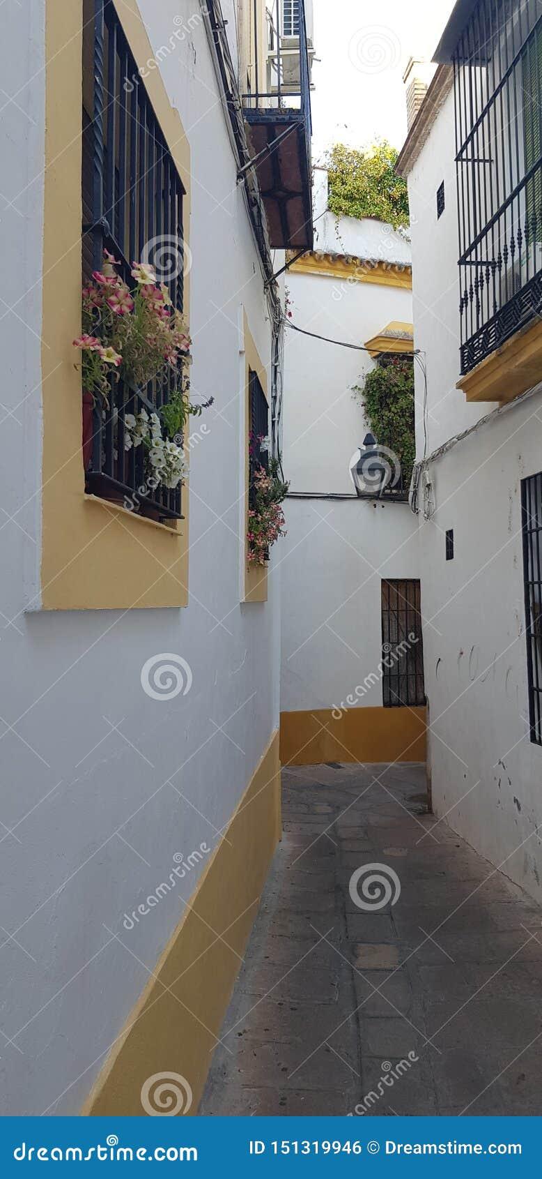 Andalusischer Blumenstraßengarten