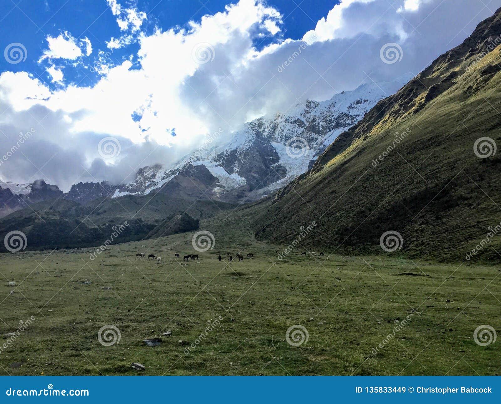 Andando através de um vale aberto ao longo da fuga de Salkantay na maneira a Machu Picchu, Peru Bonito