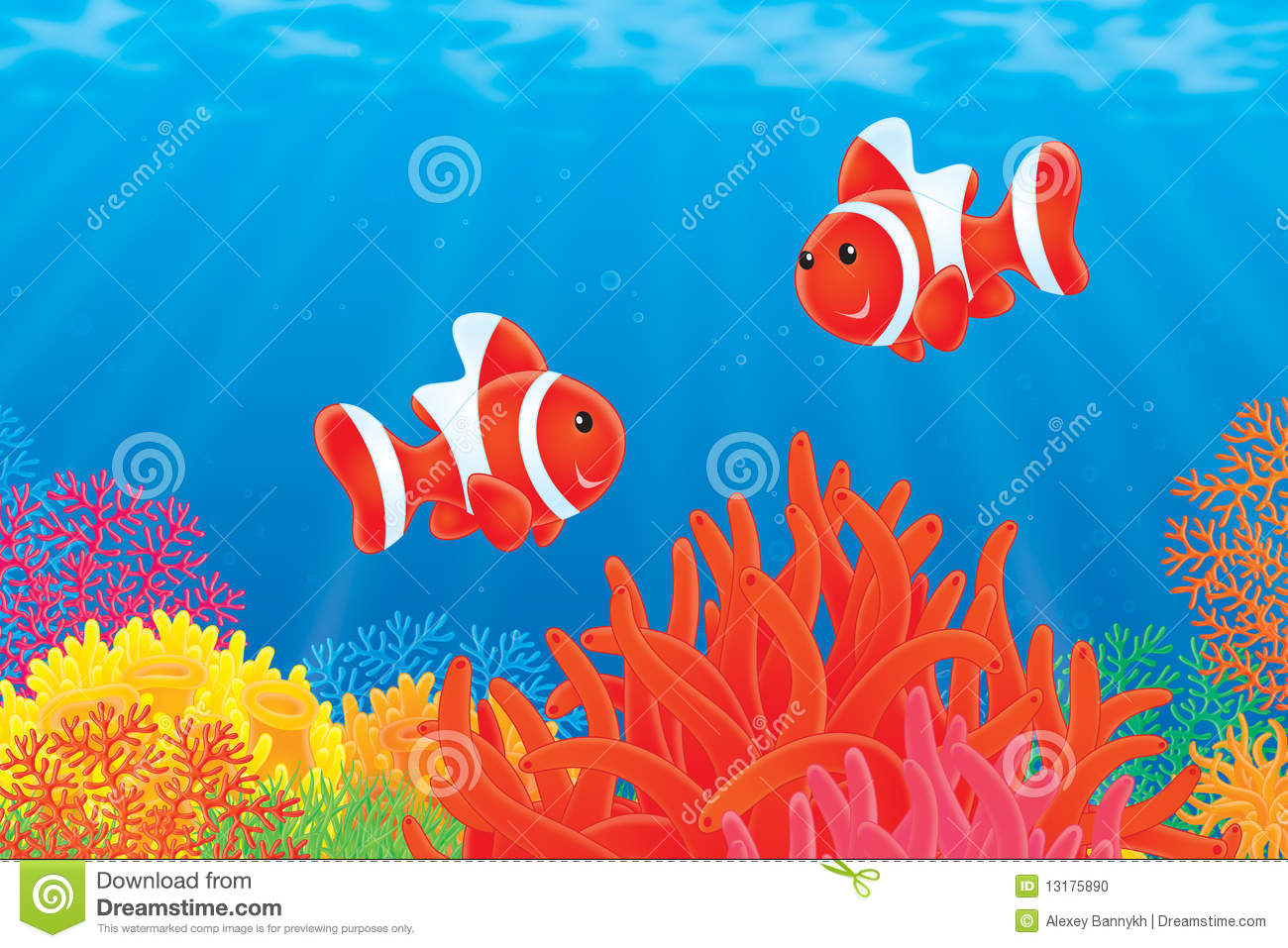 Anemonefishes stock illustration. Illustration of colorful - 13175890