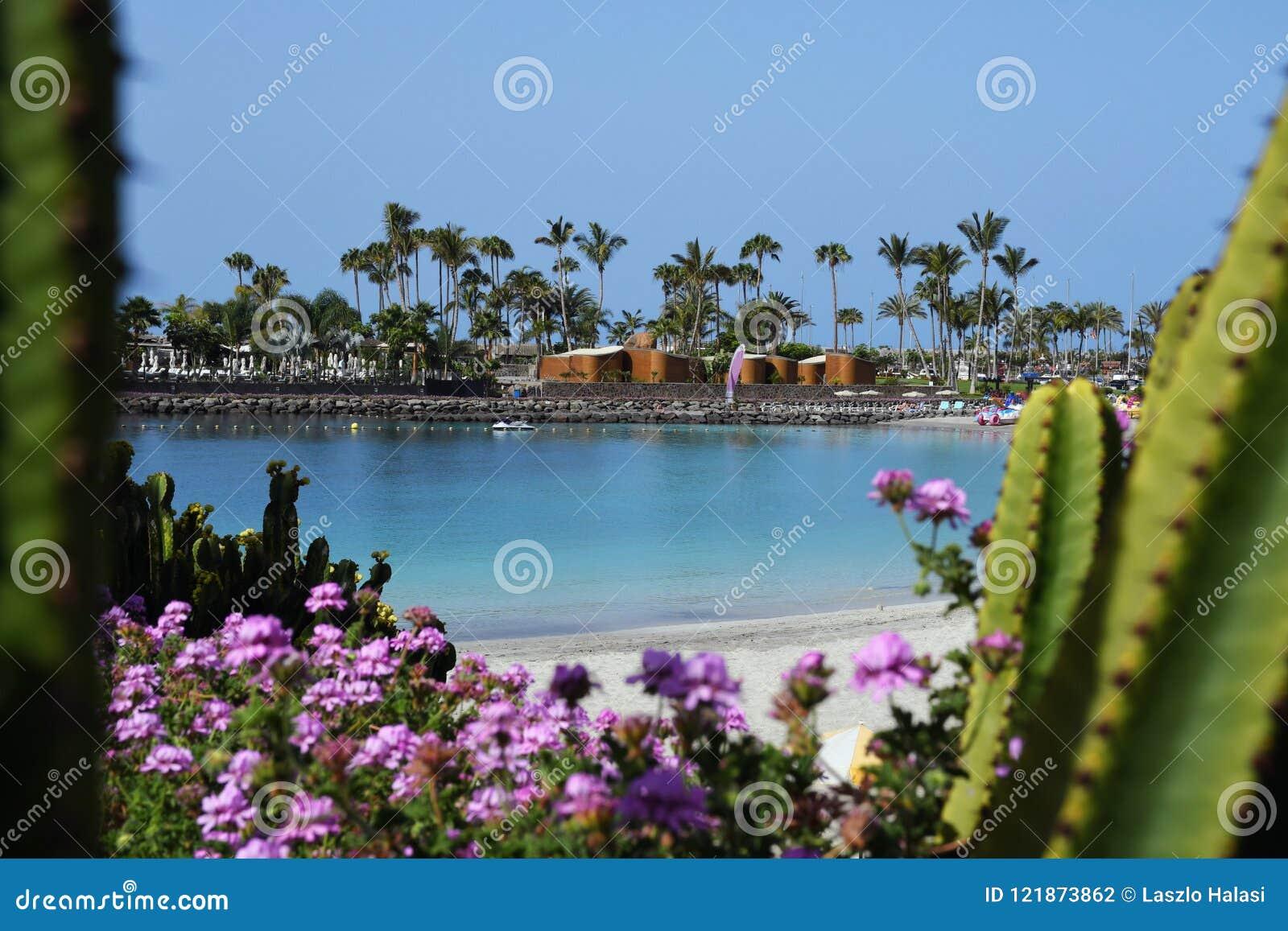 Anfi felMst strand, ö av Gran Canaria, Spanien