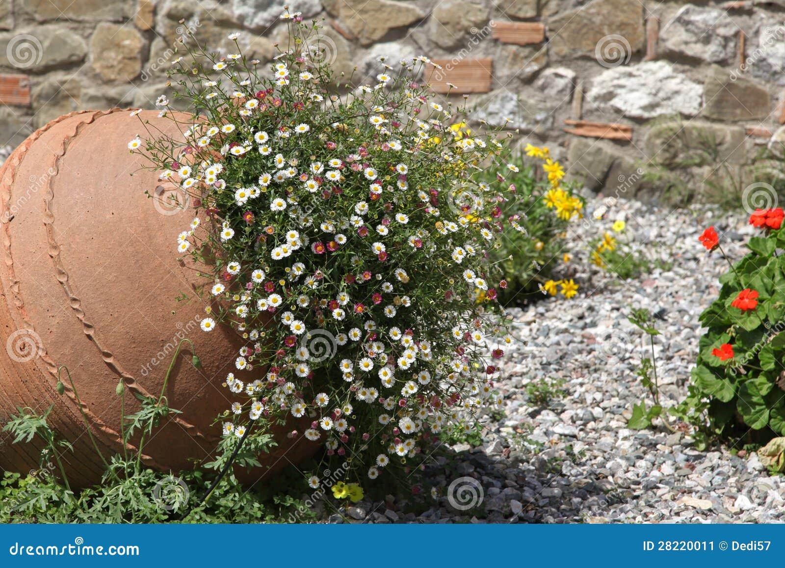Anfora con i fiori immagine stock immagine 28220011 for Anfora giardino
